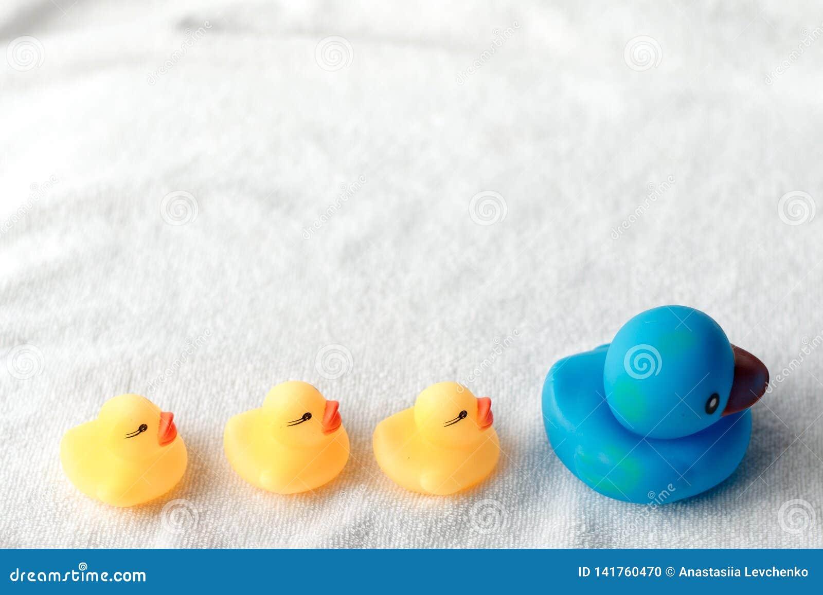 Rij van gele en blauwe eenden op witte achtergrond De babyvlakte lag Leiding en na concept