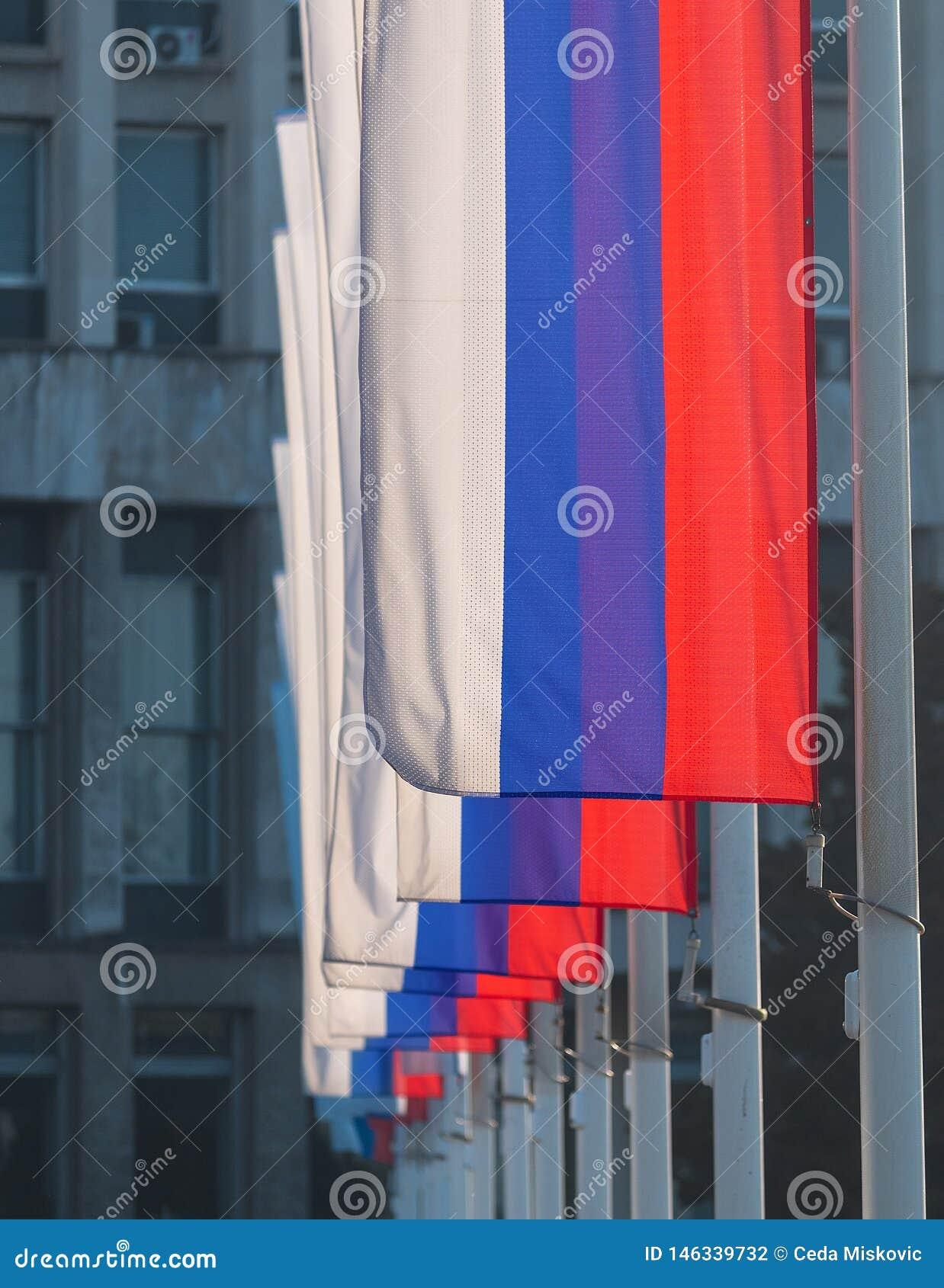 Rij van nationale, patriottische, rode, blauwe en witte gekleurde Servische vlaggen