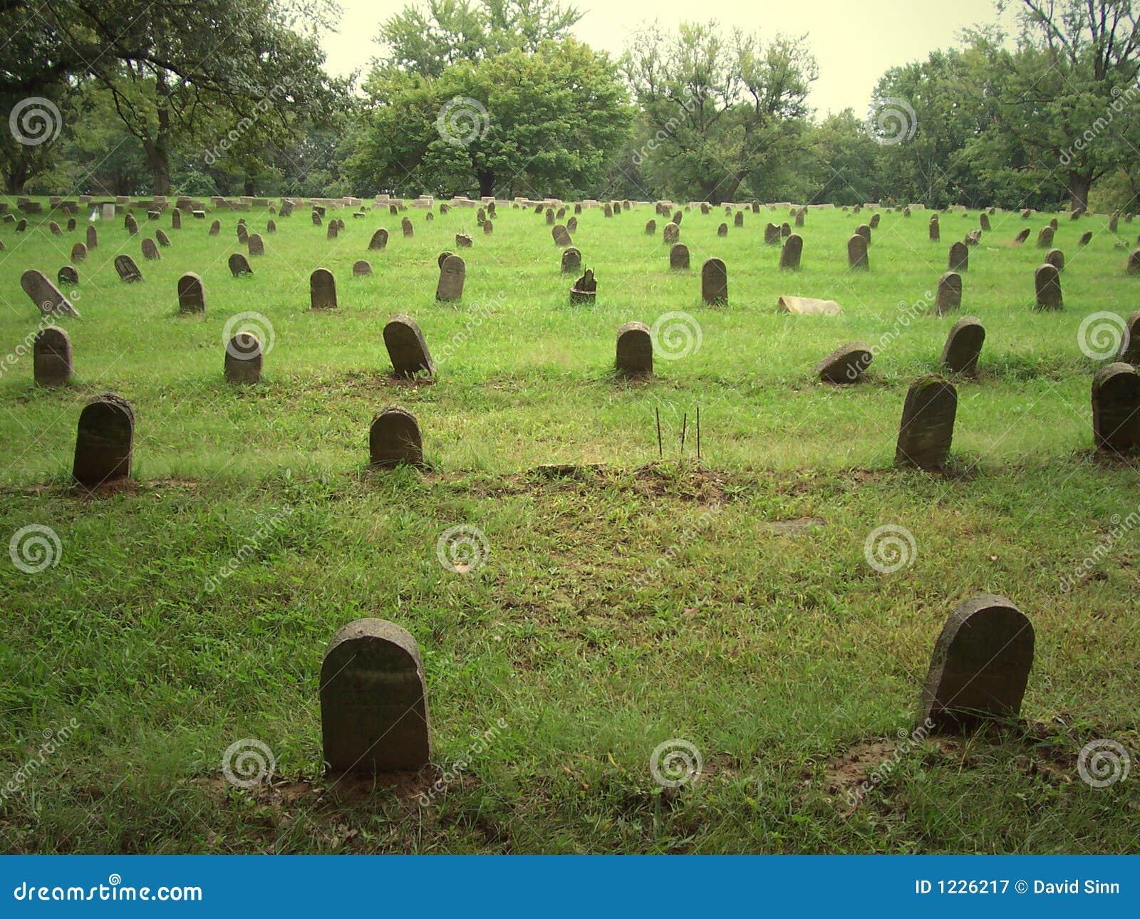 Rijen van genummerde graven