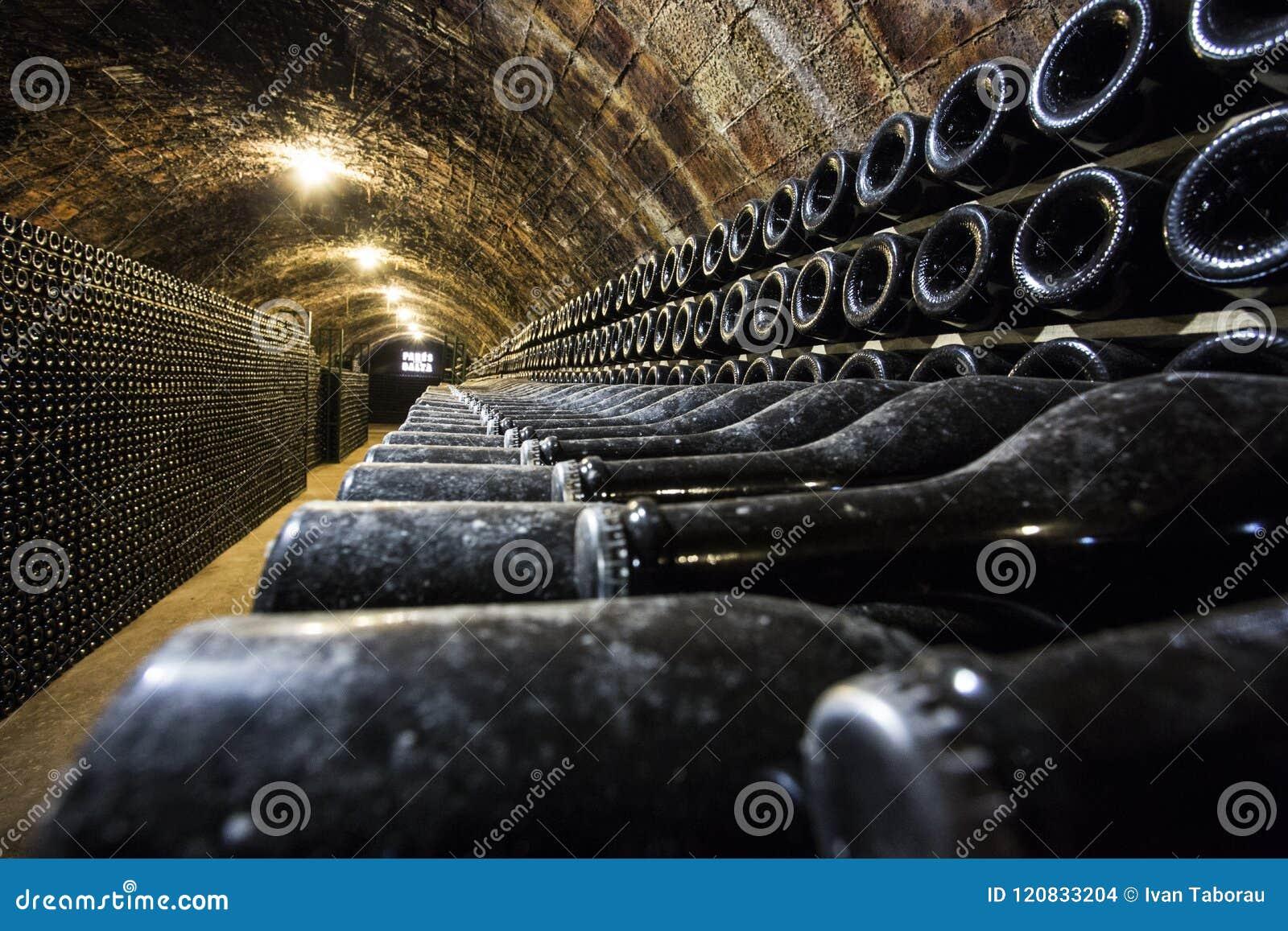 Rijen van wijnflessen in de kelder