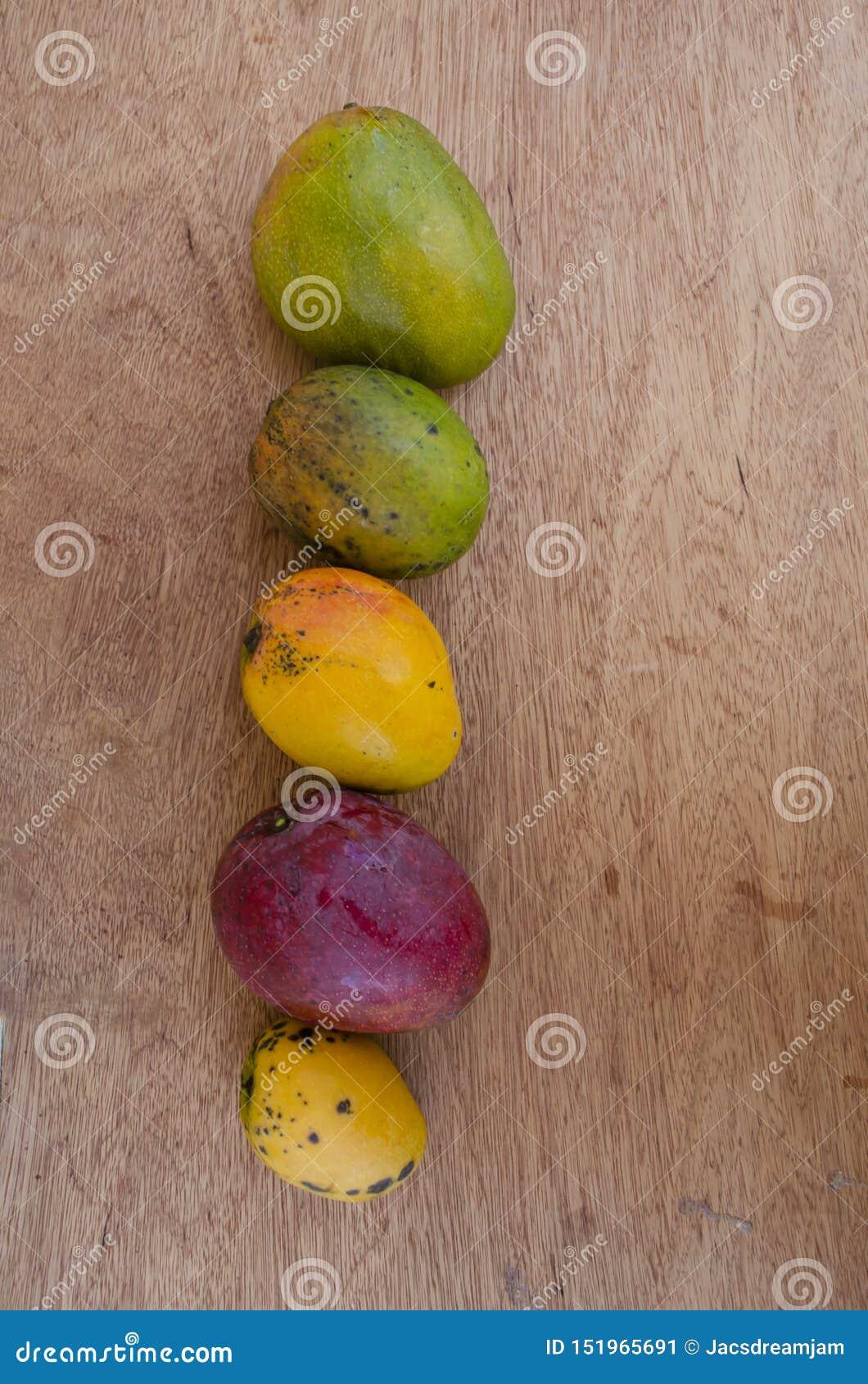 Rijpe Juley, Robin, Connon, Irwin, en Greenskin-Mango s