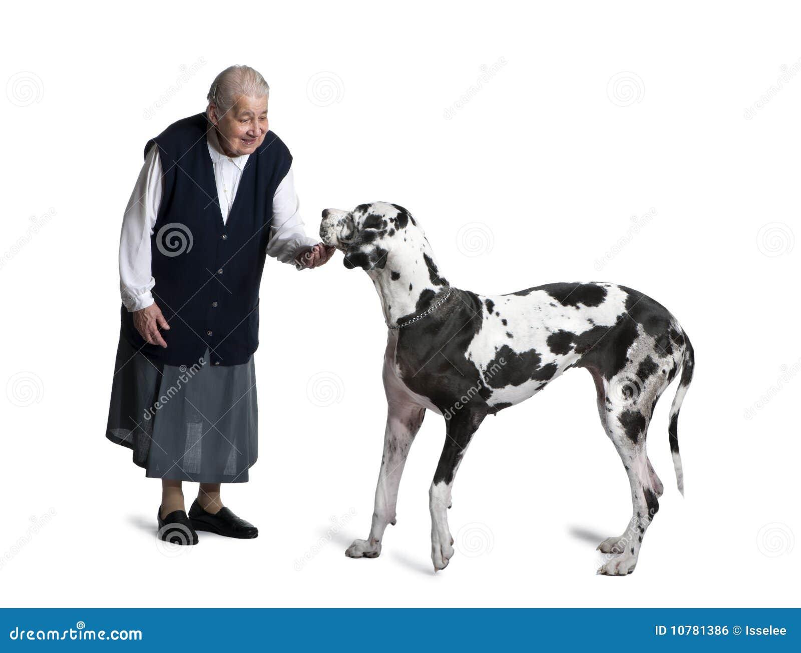 Rijpe vrouw die zich met de grote hond van de Deen bevindt