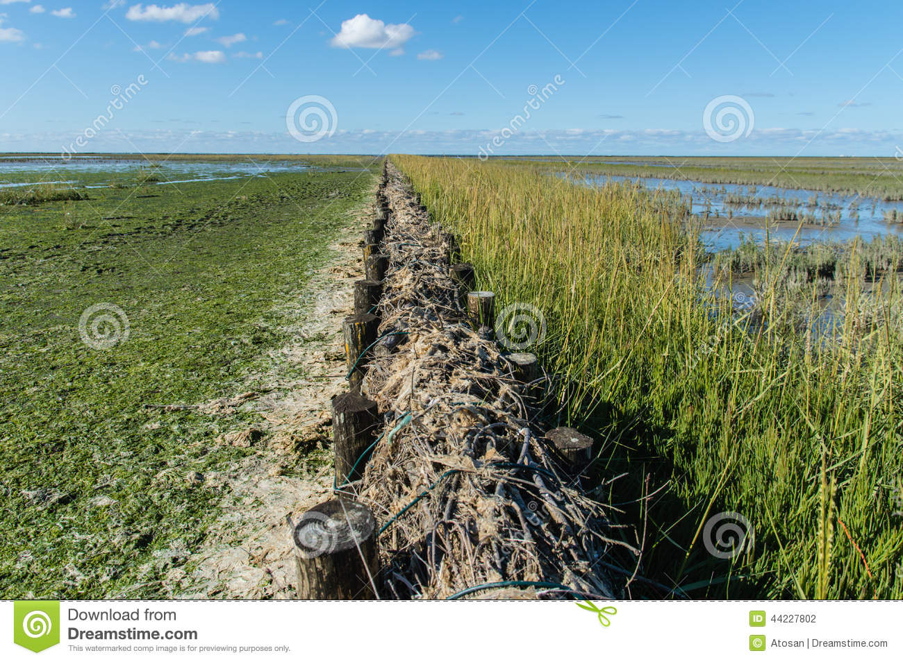 Rijshout dammen stock photo image of netherlands dams for Soil reclamation
