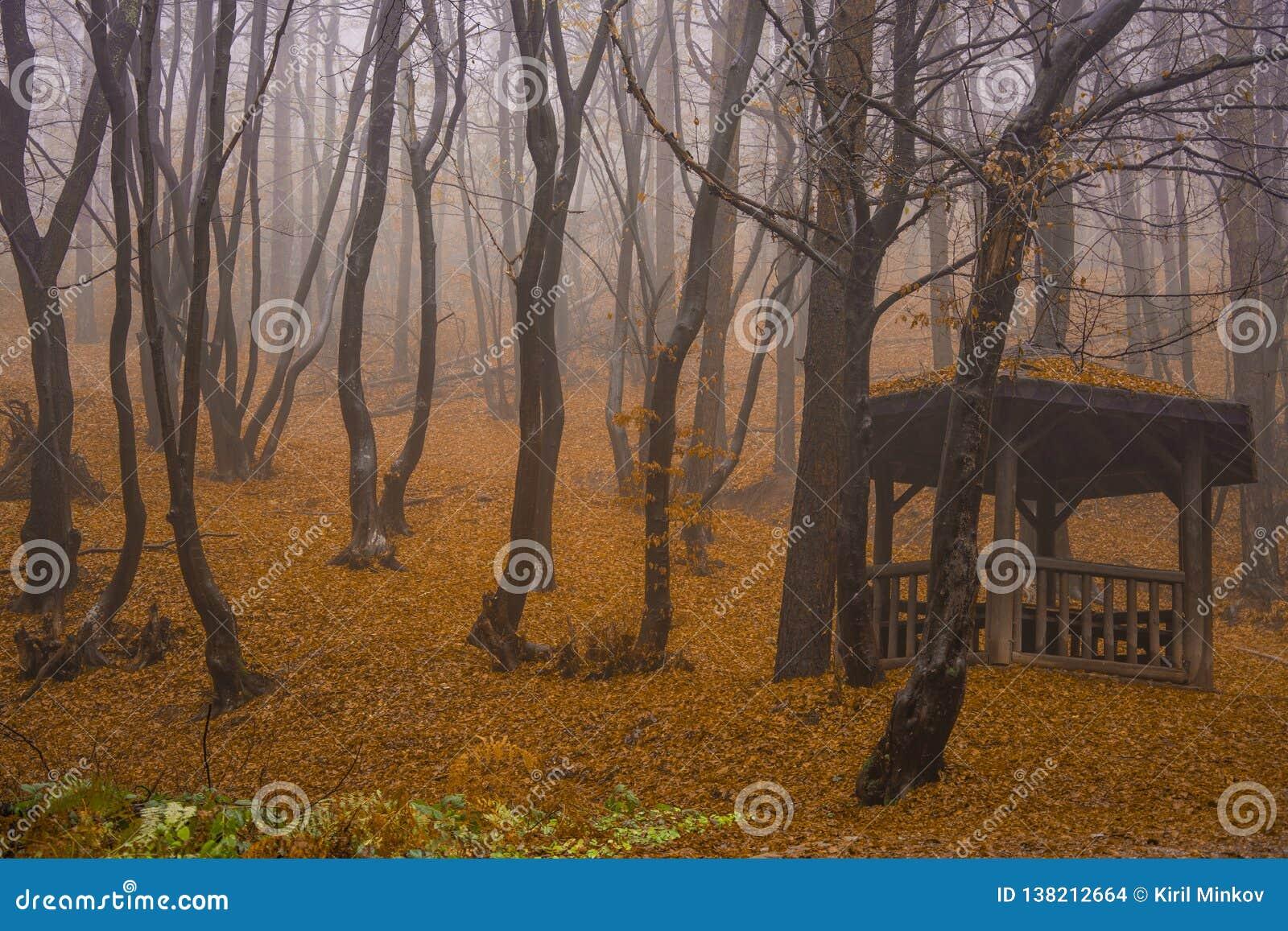 Rila góra w jesieni