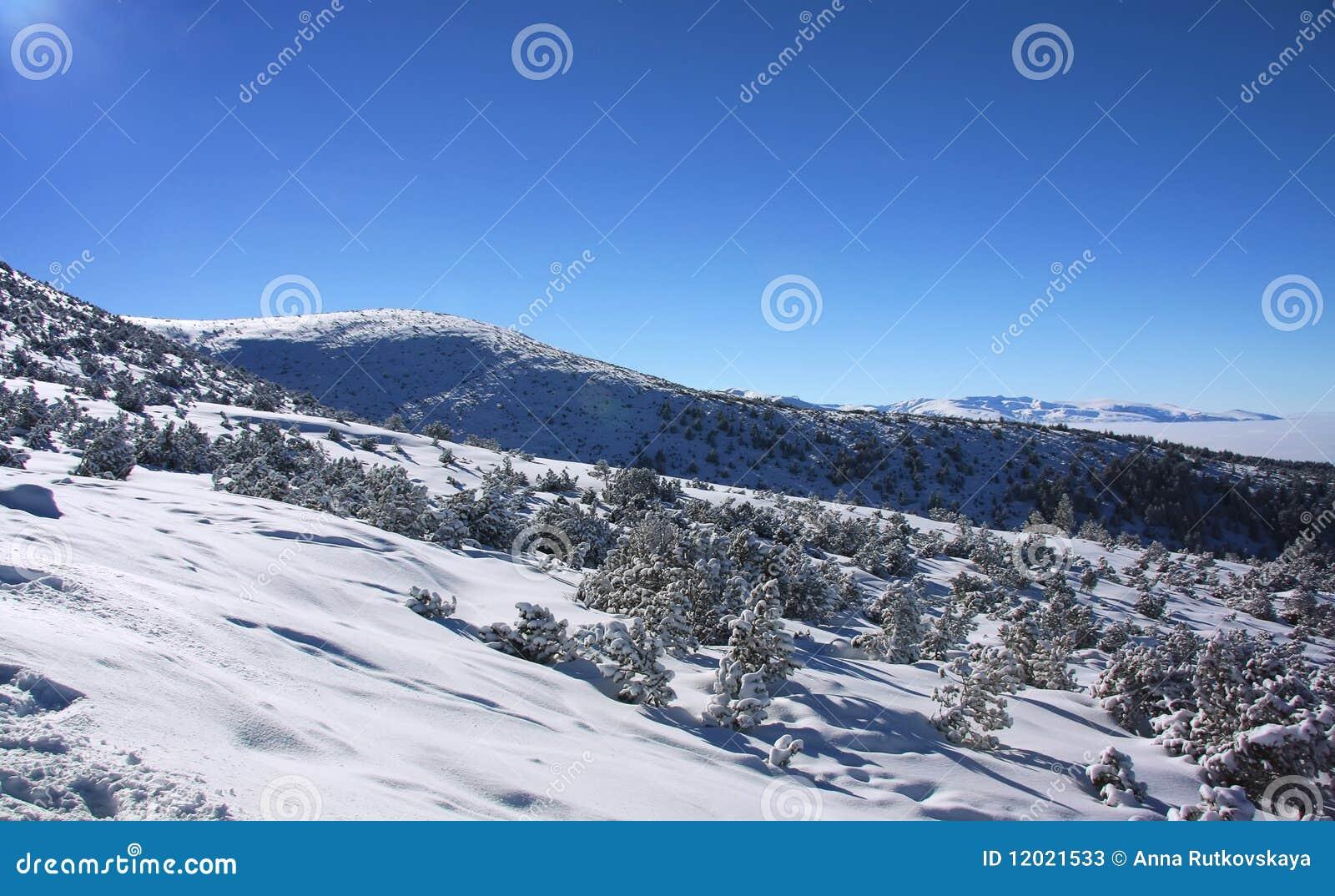 Borovets Bulgaria  City pictures : Rila Mountains In Borovets, Bulgaria Stock Photos Image: 12021533