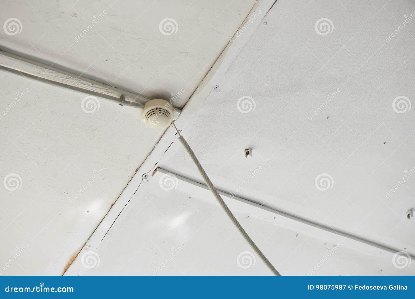 Soffitti In Legno Bianco : Legno dipinto di bianco i soffitti a volta foto immagine stock