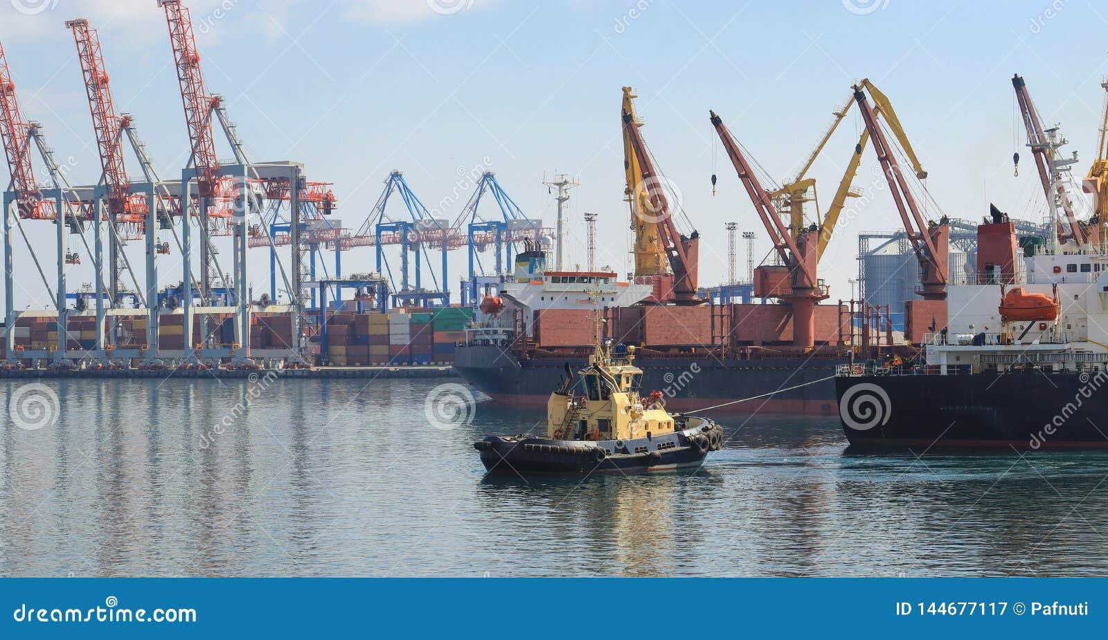 Rimorchiatore all arco della nave da carico, assistente la nave per manovrare in porto marittimo