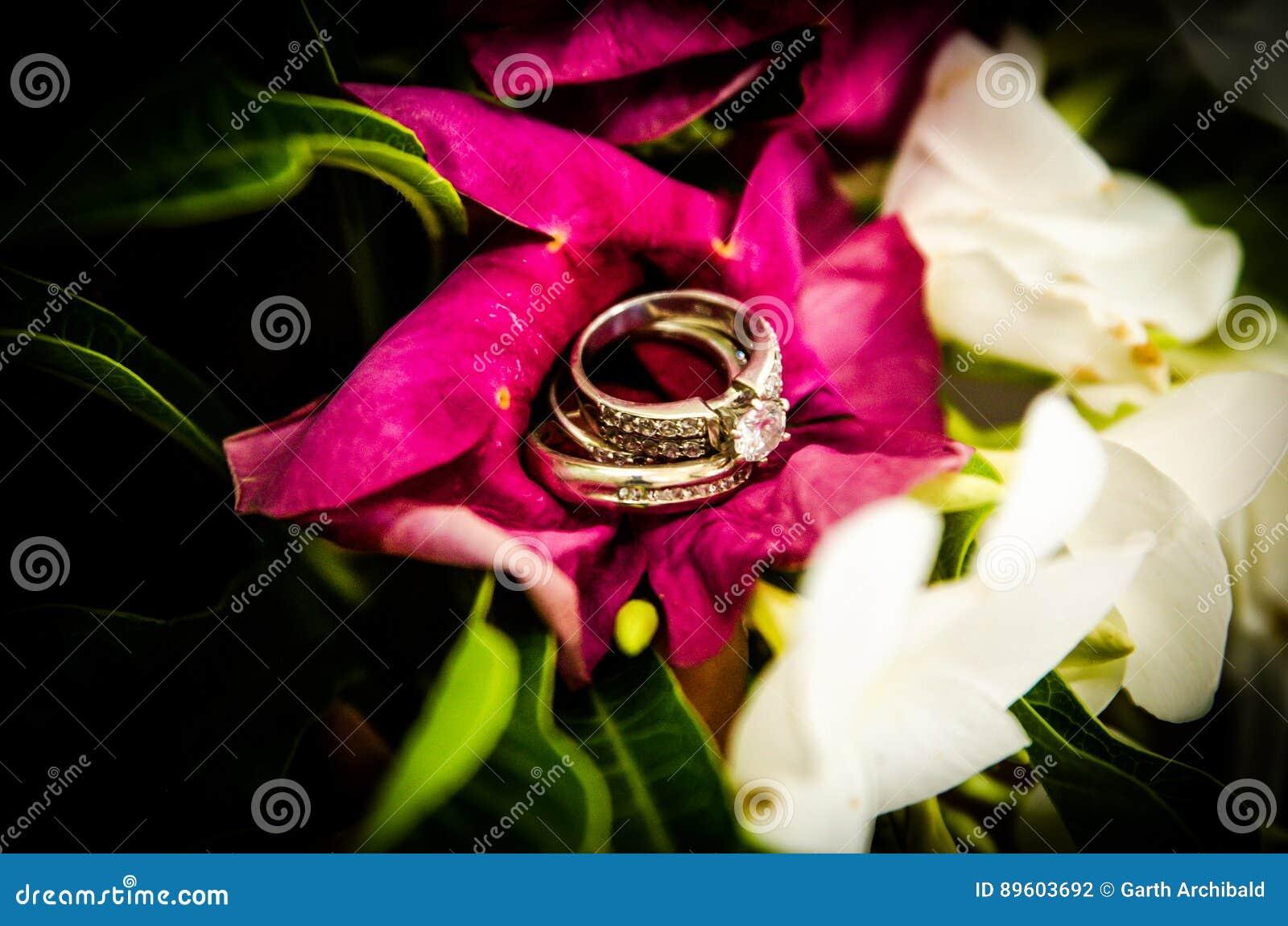 Ringe Der Diamantenen Hochzeit Auf Purpurroter Blume Stockfoto