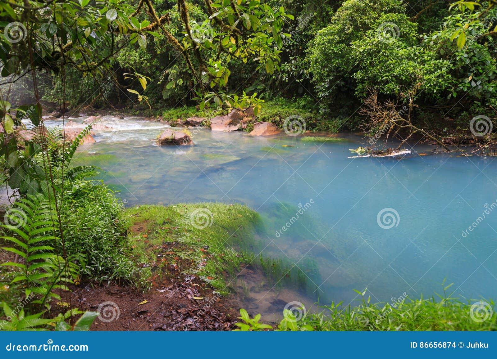 Rio celeste en vegetatie