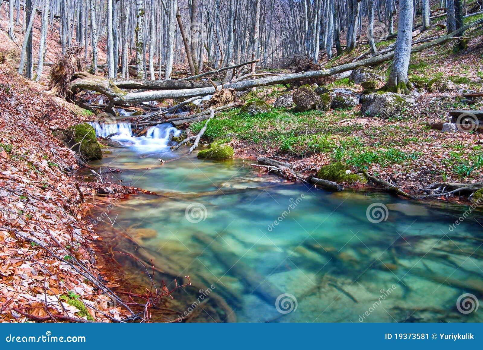 Rio da montanha da esmeralda
