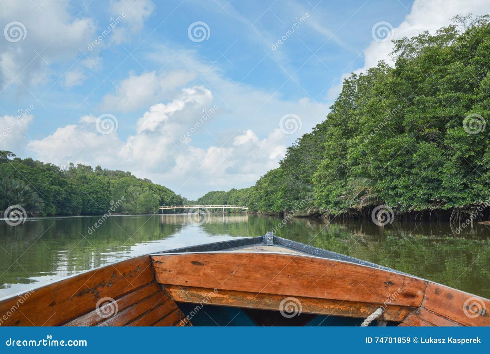 Rio da selva, Brunei Darussalam