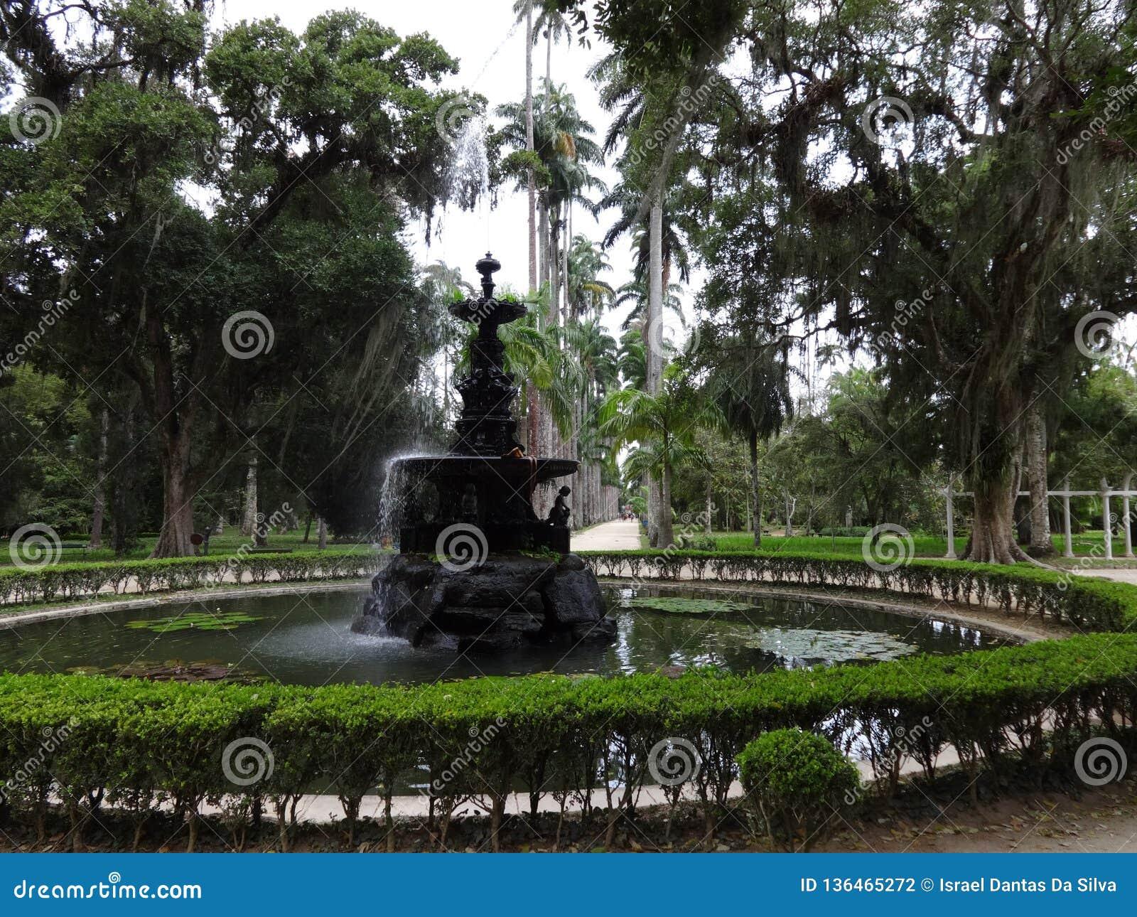 Rio de Janeiro Botanical Garden Fountain