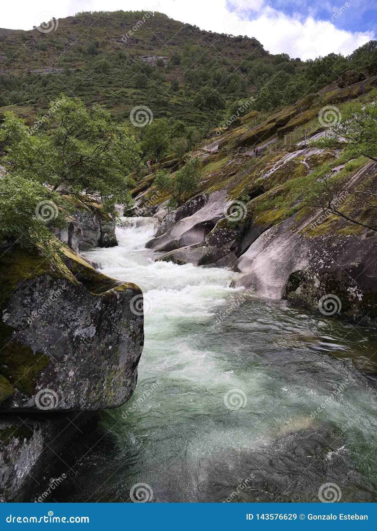Rio de Whitewater que flui da montanha