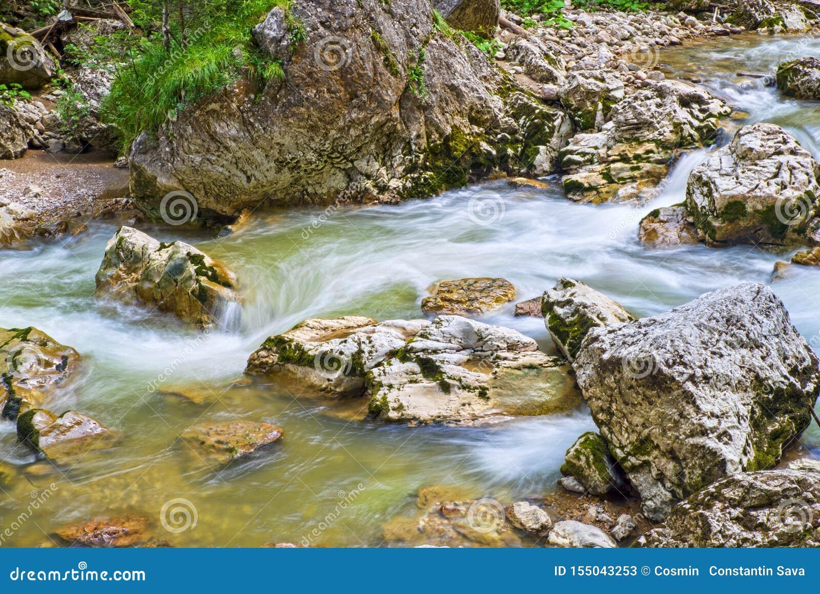 Rio do verão que flui nas montanhas