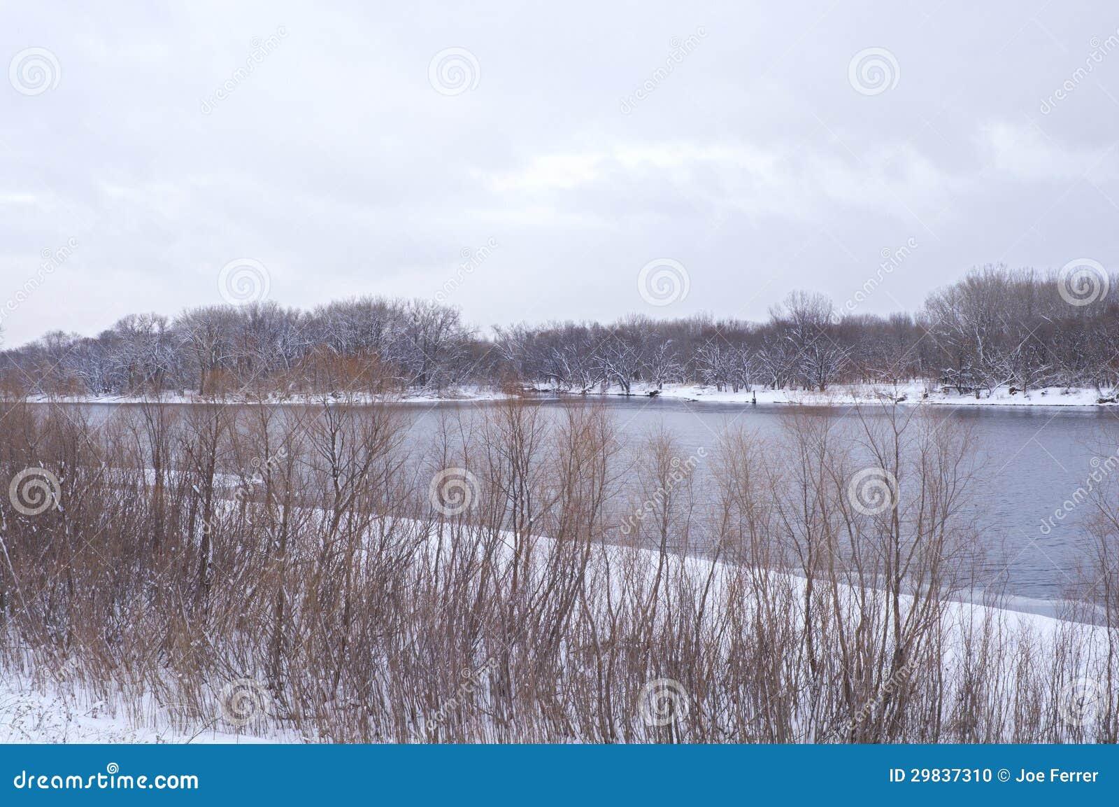 Bancos arborizados do rio Mississípi no inverno