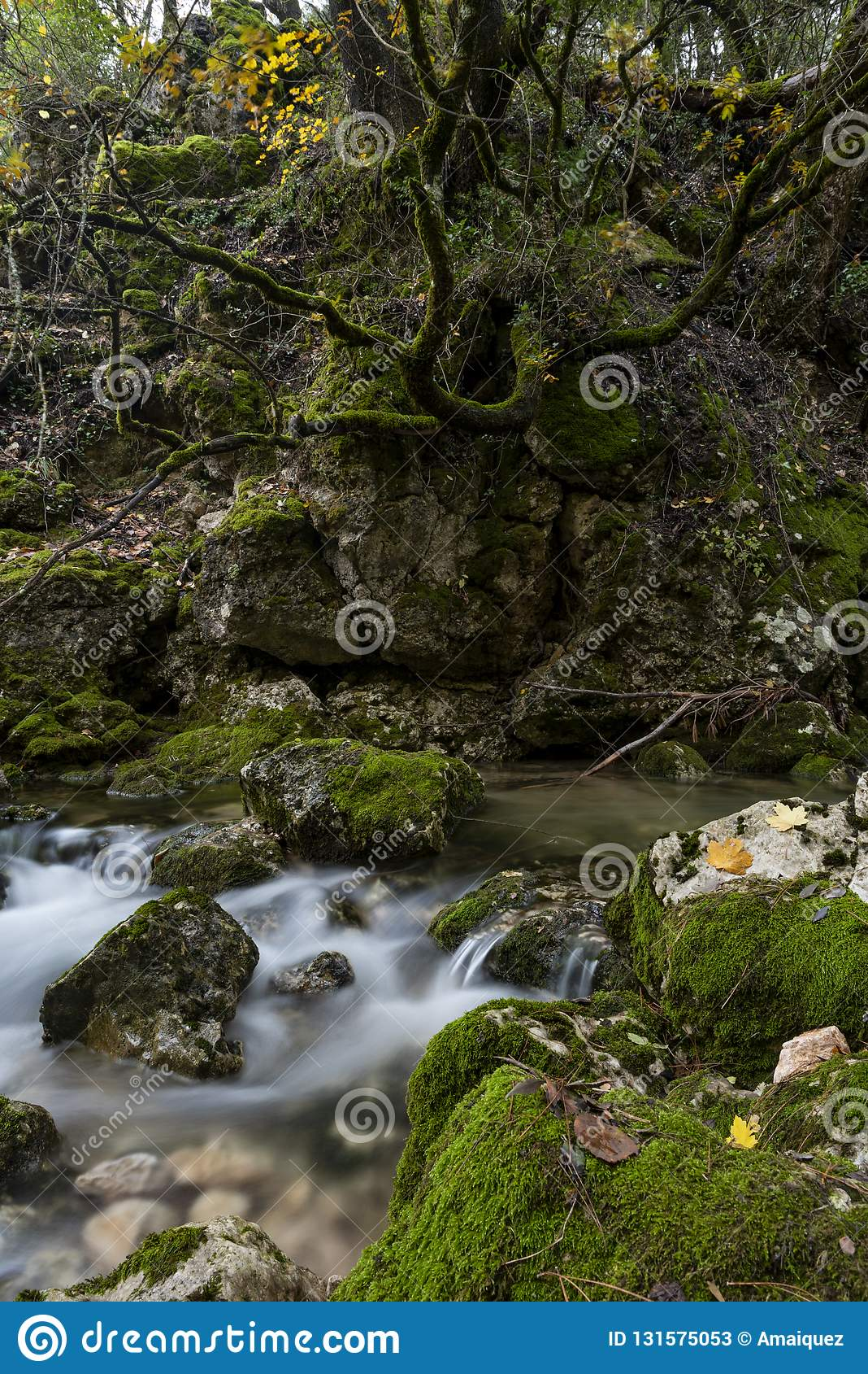 Rio Mundo źródło, Naturalny park Los Calares Del rÃo Mundo y De Los angeles Sima