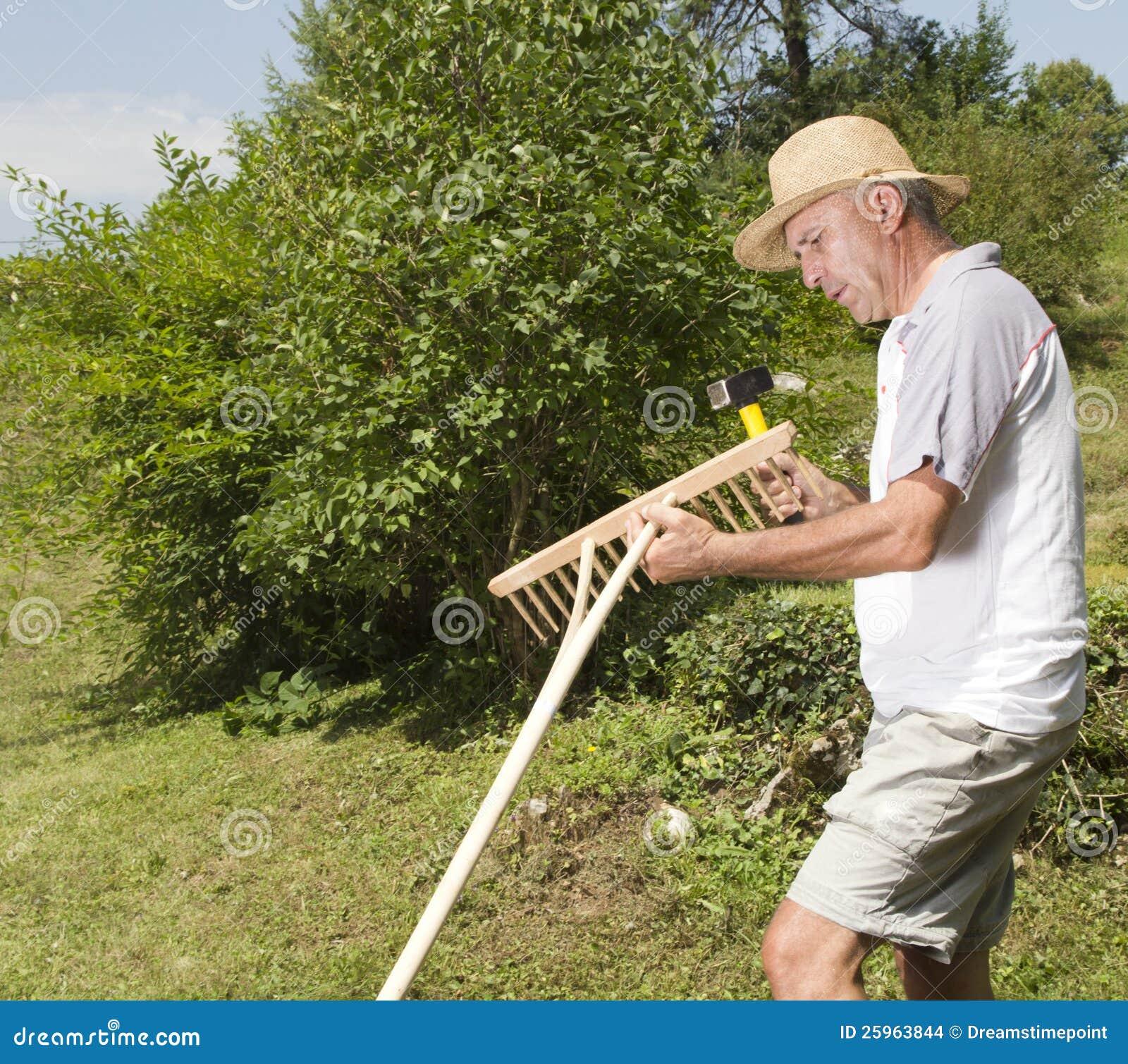 Riparazione del rastrello di legno nel giardino immagini - Il sole nel giardino ...