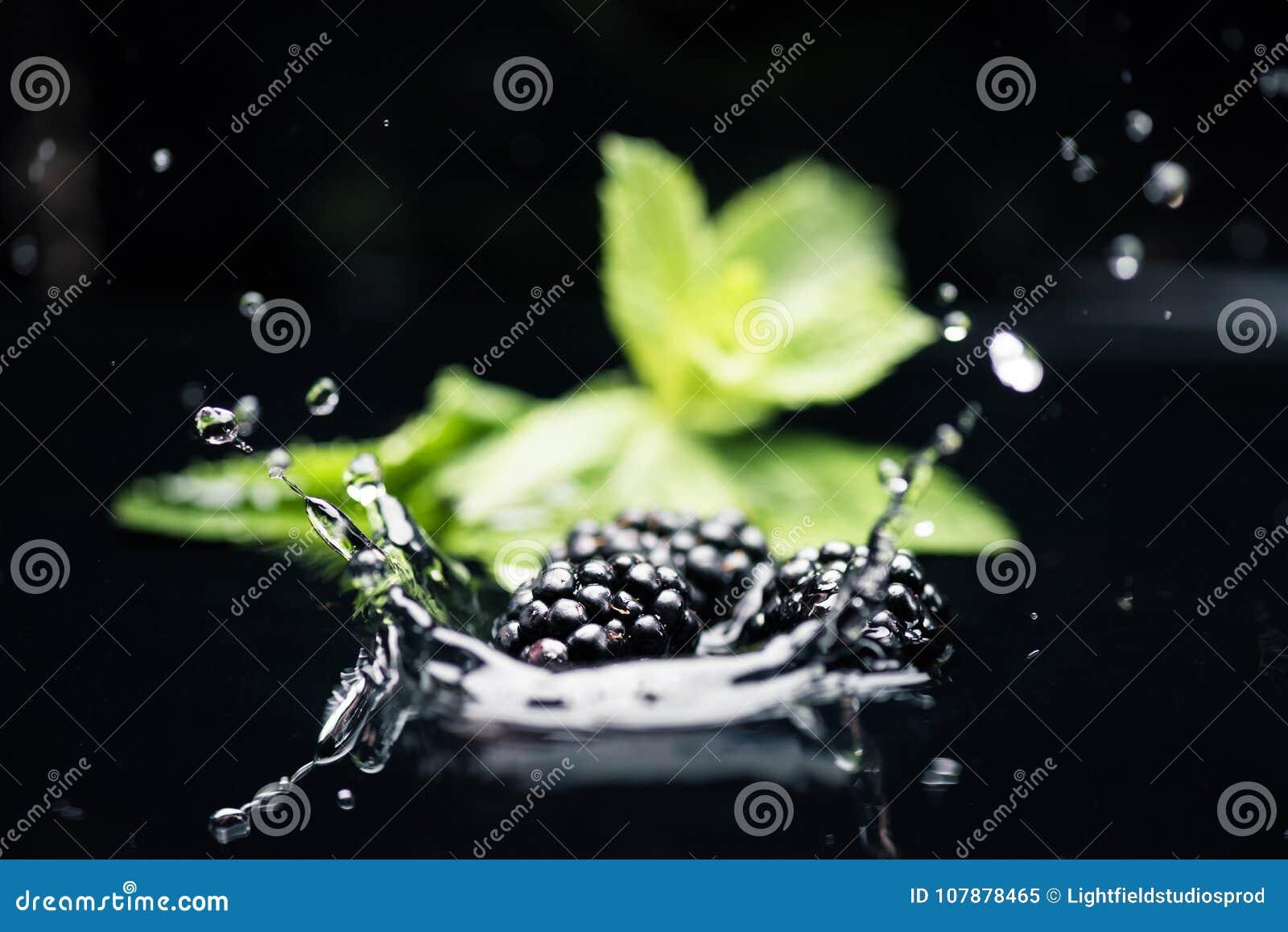 ripe blackberries falling in water