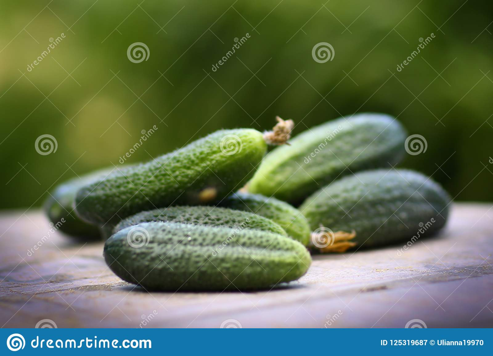 Ripe Cucumbers Close Up Horizontal Photo Stock Image Image Of
