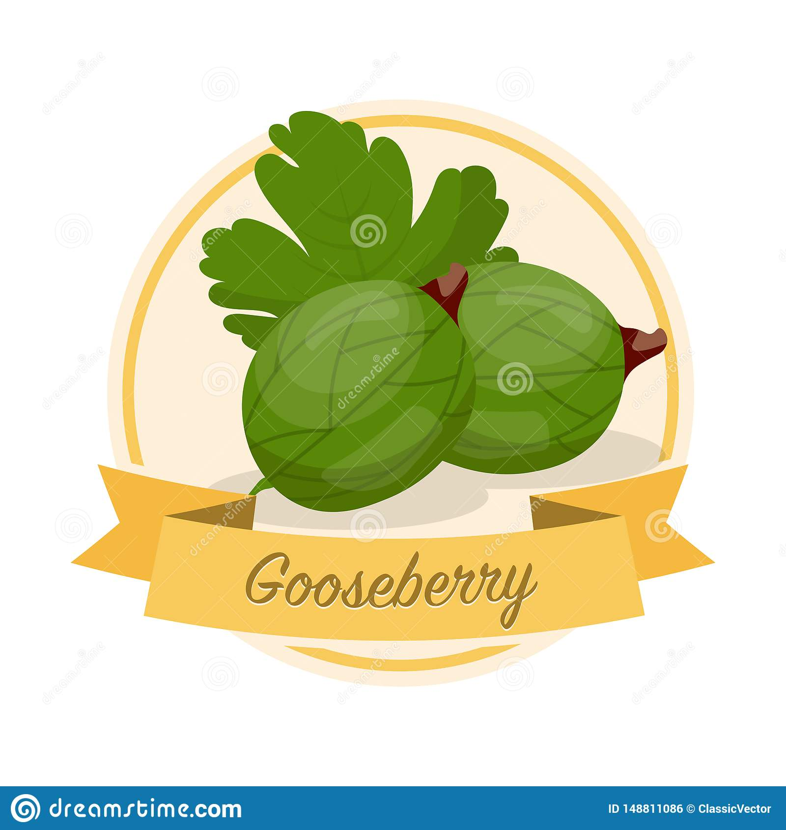 Ripe gooseberries with name vector illustration