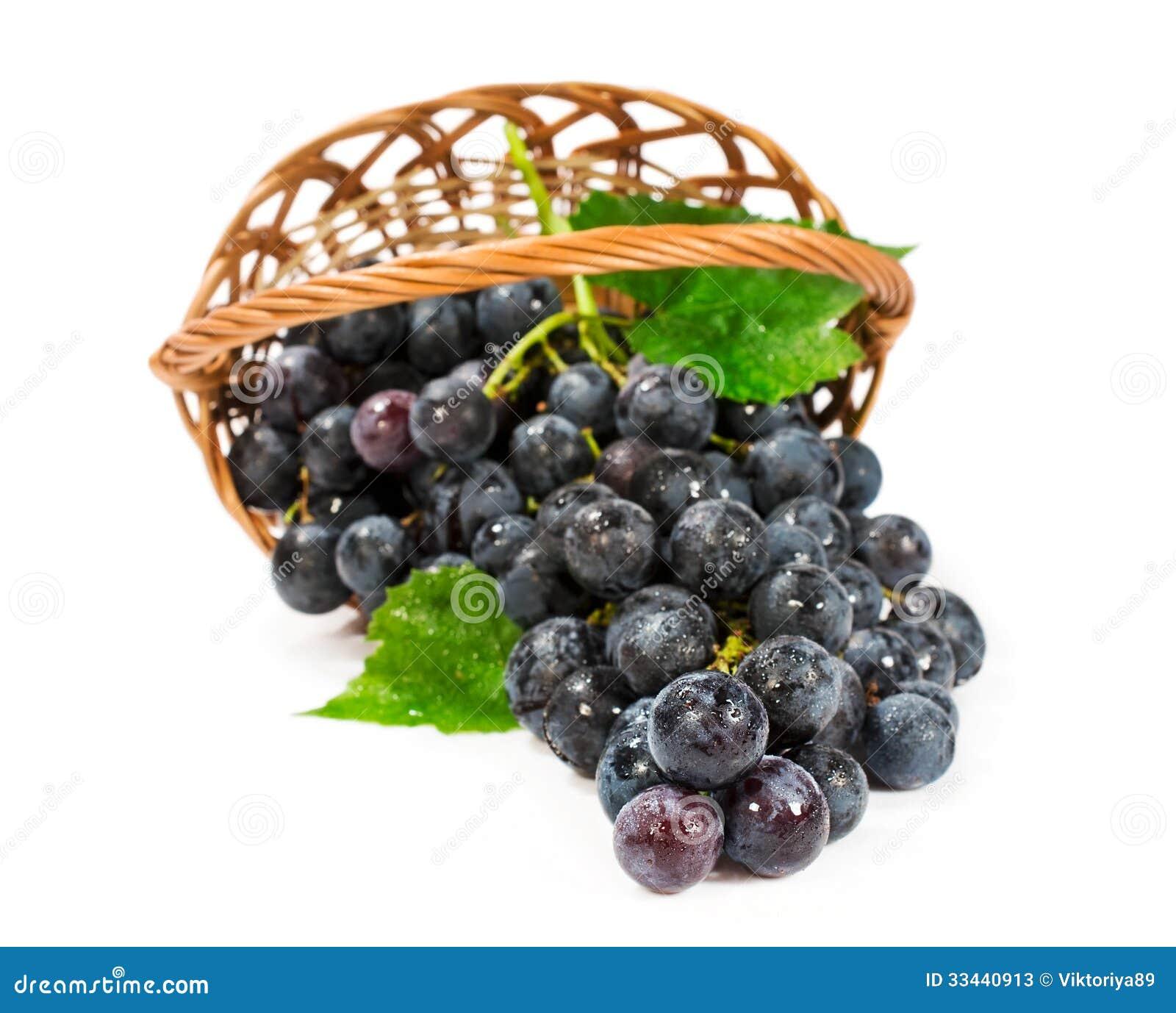 Ripe grapes in a wicker basket