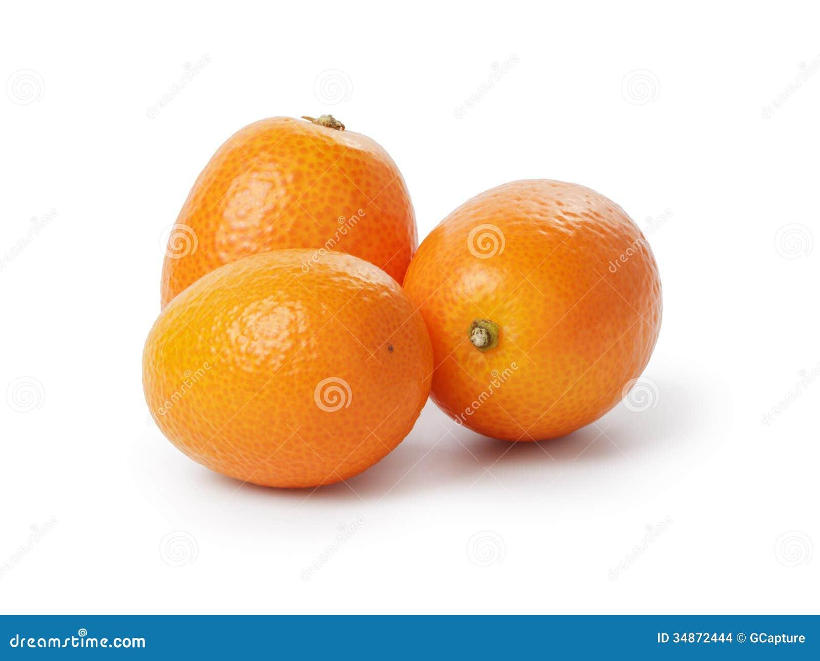 Pictures Of The Kumquat Fruit