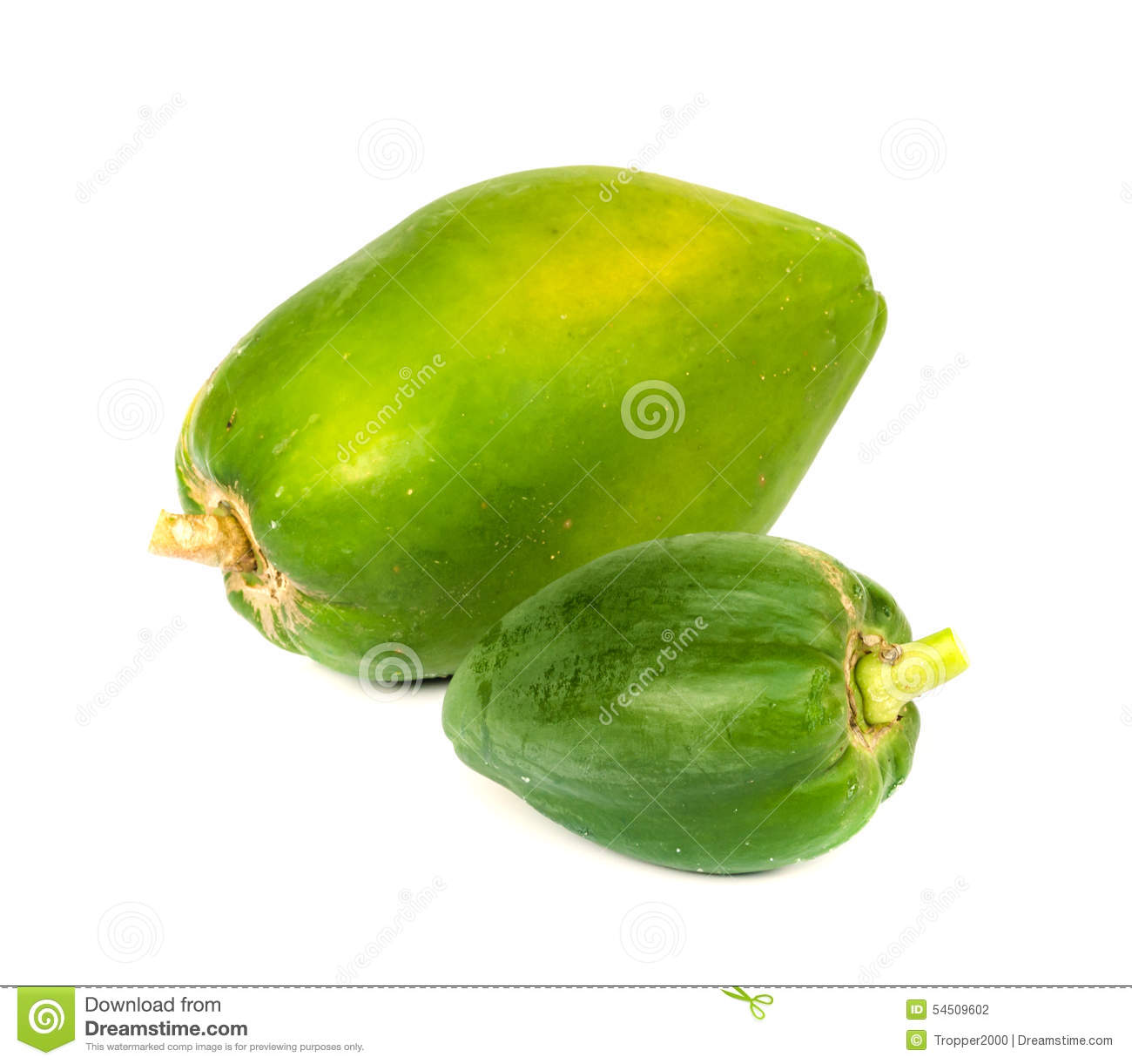 papaya fruit thesis Utilize papaya fruits successfully to make an acceptable quality of wine as per the  generation of ethanol by microbial conversion of sugar in the papaya fruit [1.
