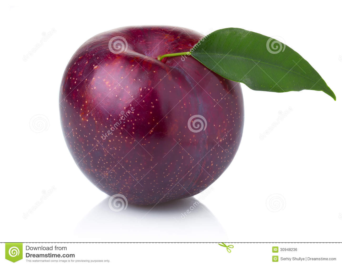 how to tell if a plum is ripe