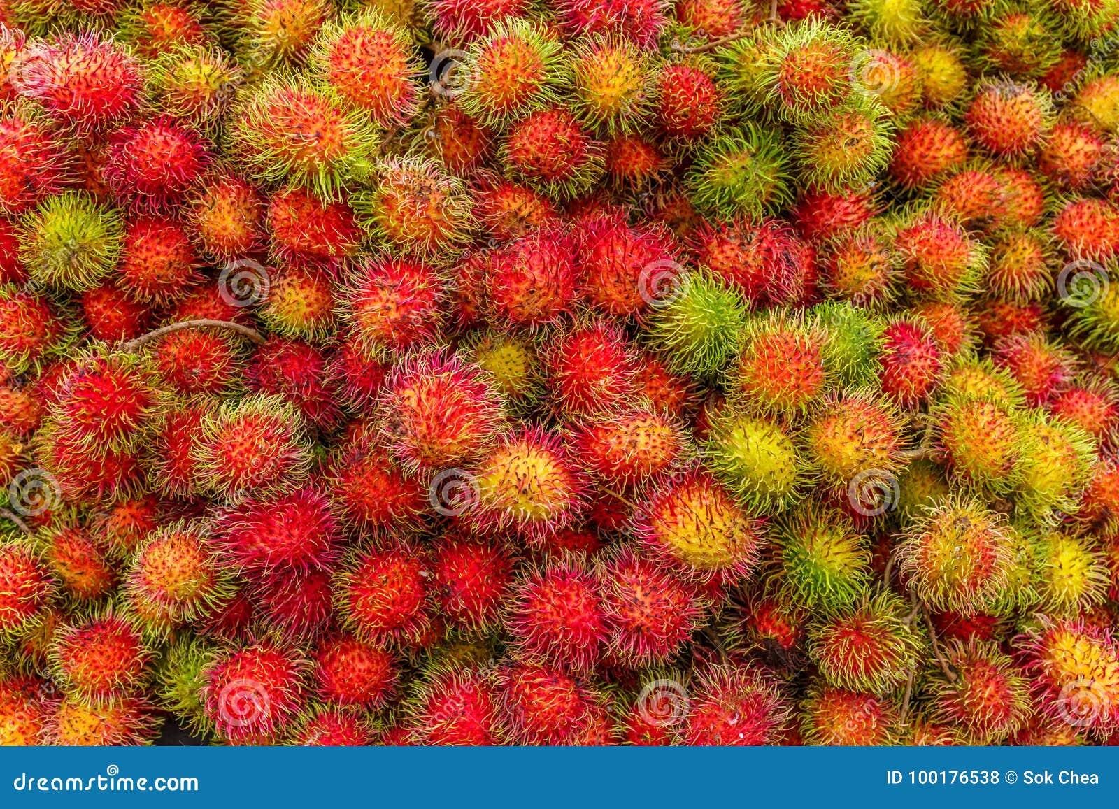 Ripe Rambutan the Popular Juicy Sweet Tropical Fruit Serving as