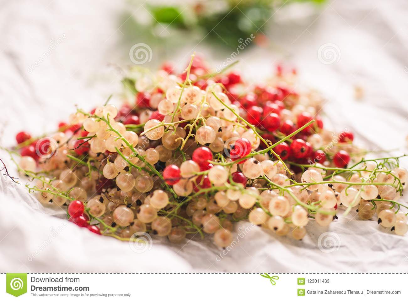 Red and white currants on a white paper