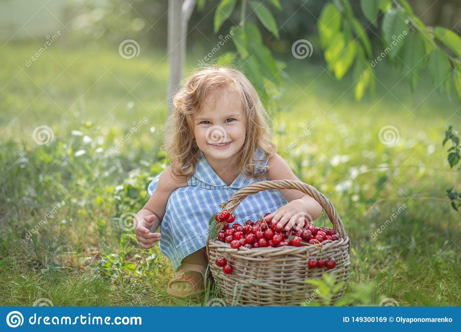 Ripe and sweet summer berries in the orchard