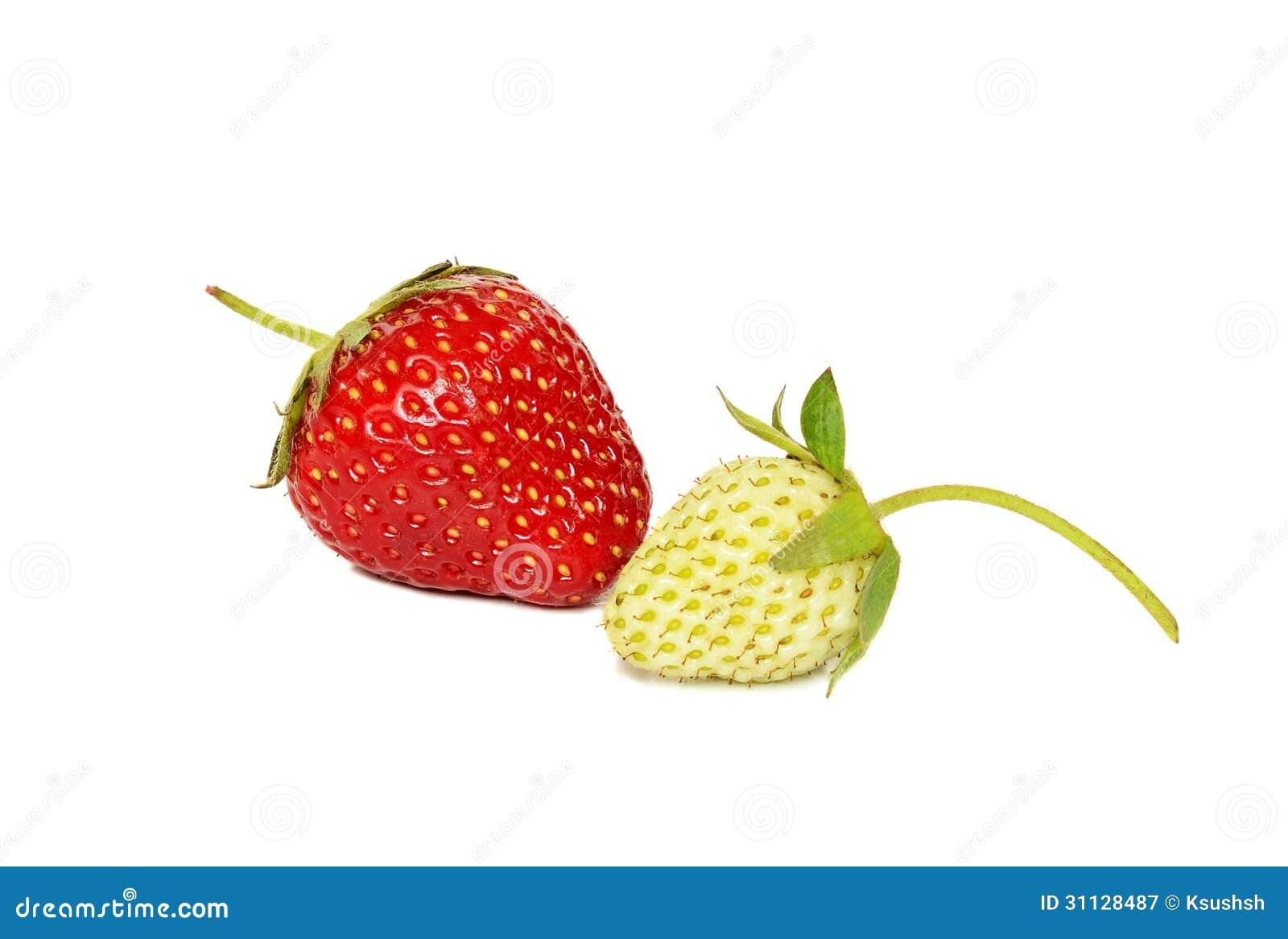 Unripe Strawberries Ripe And Unripe...