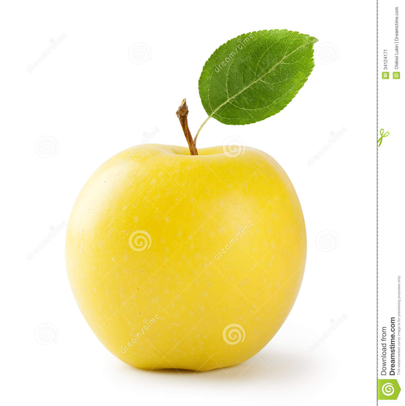 Design House Plan Ripe Yellow Apple With Leaf Stock Image Image 34124171