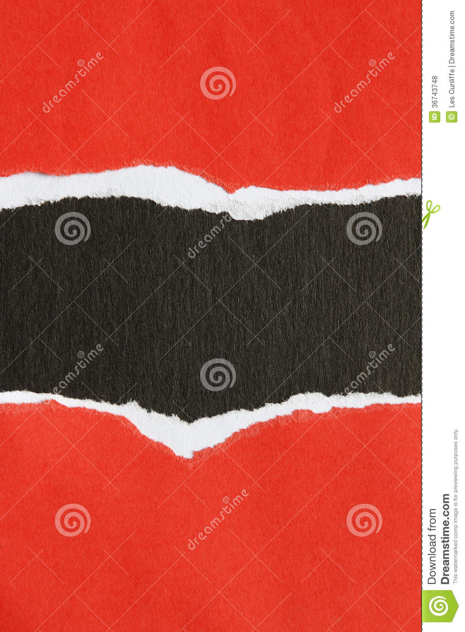 red black essays Download and read red wolves and black bears nineteen essays red wolves and black bears nineteen essays well, someone can decide by themselves what they want to do and need to do but sometimes, that kind of person.