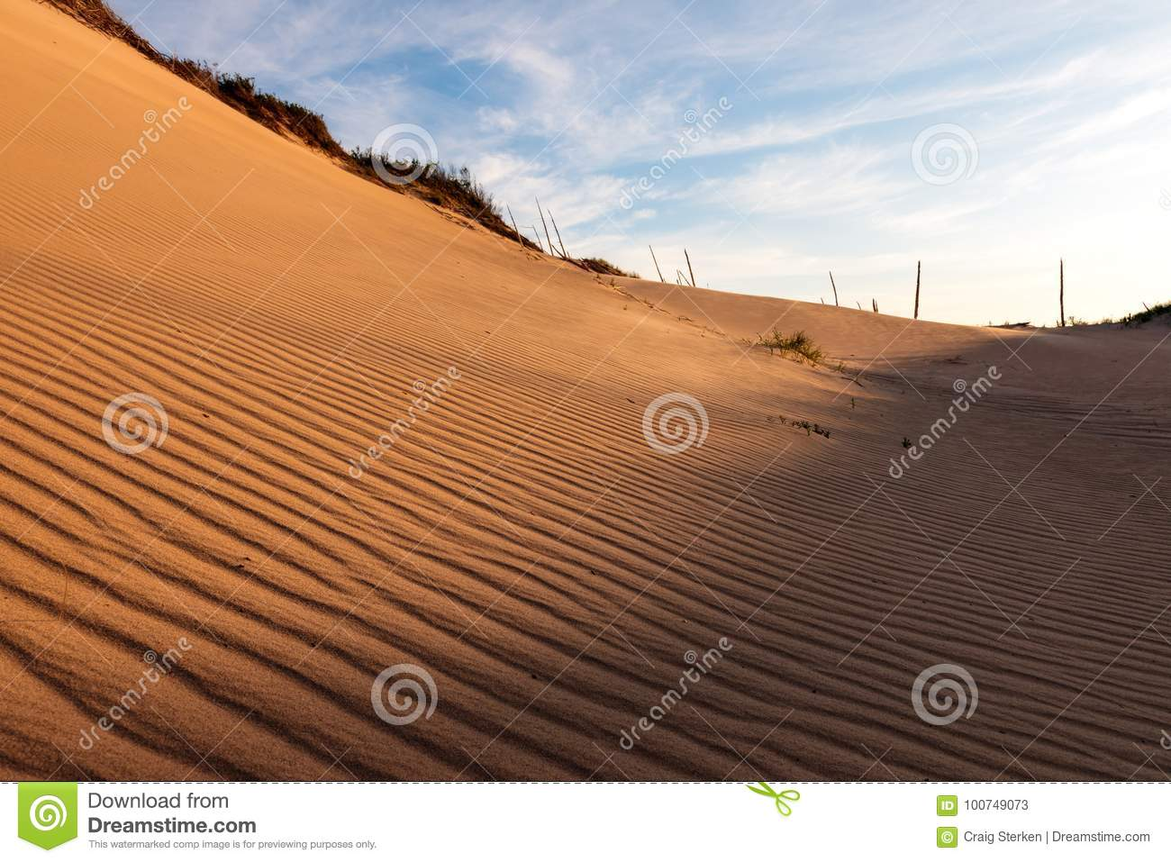 Ripples in the Dunes