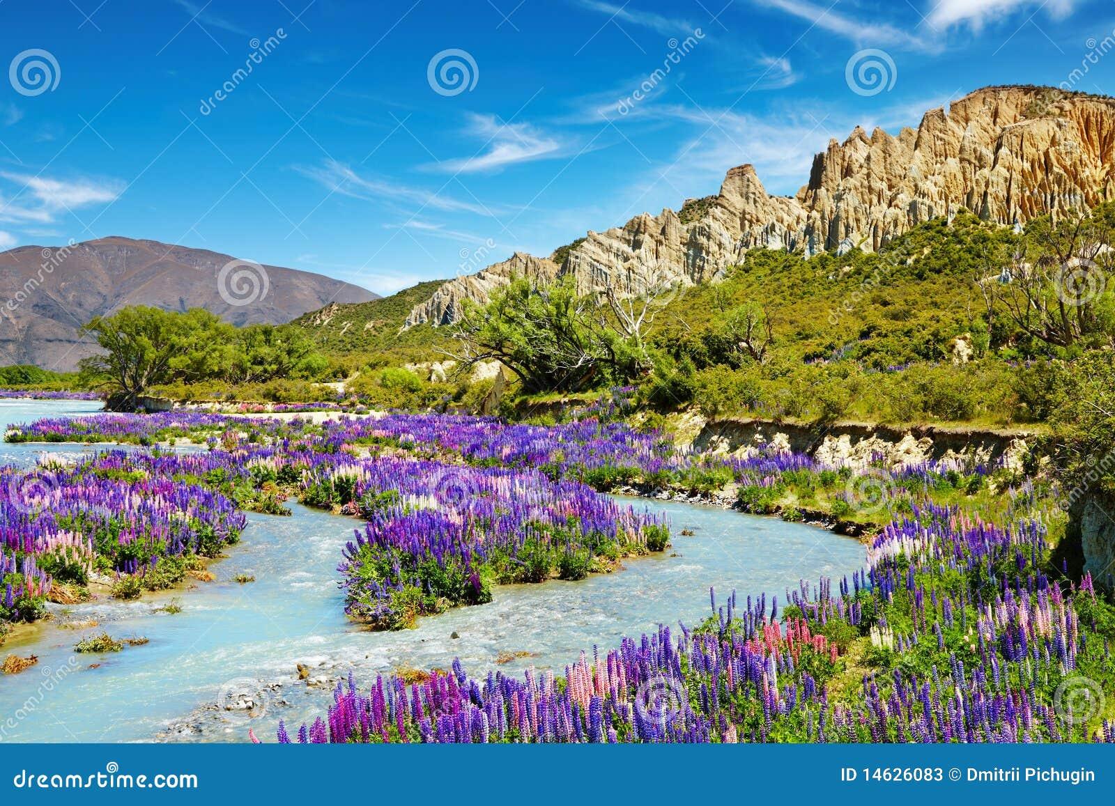 Riserva scenica delle scogliere dell argilla, Nuova Zelanda