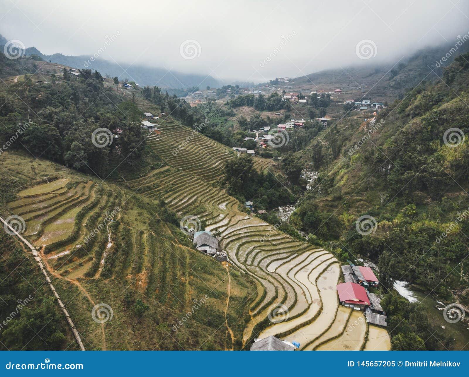 Risf?lt p? terrasserad berglantg?rd landskap det Lao Cai landskapet, Sapa Vietnam, nordv?stliga Vietnam
