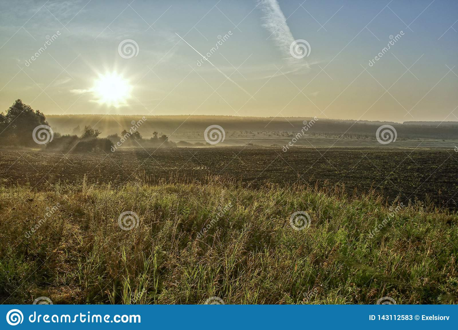 Rising sun over the field, sun rays, vegetation and trees, buildings