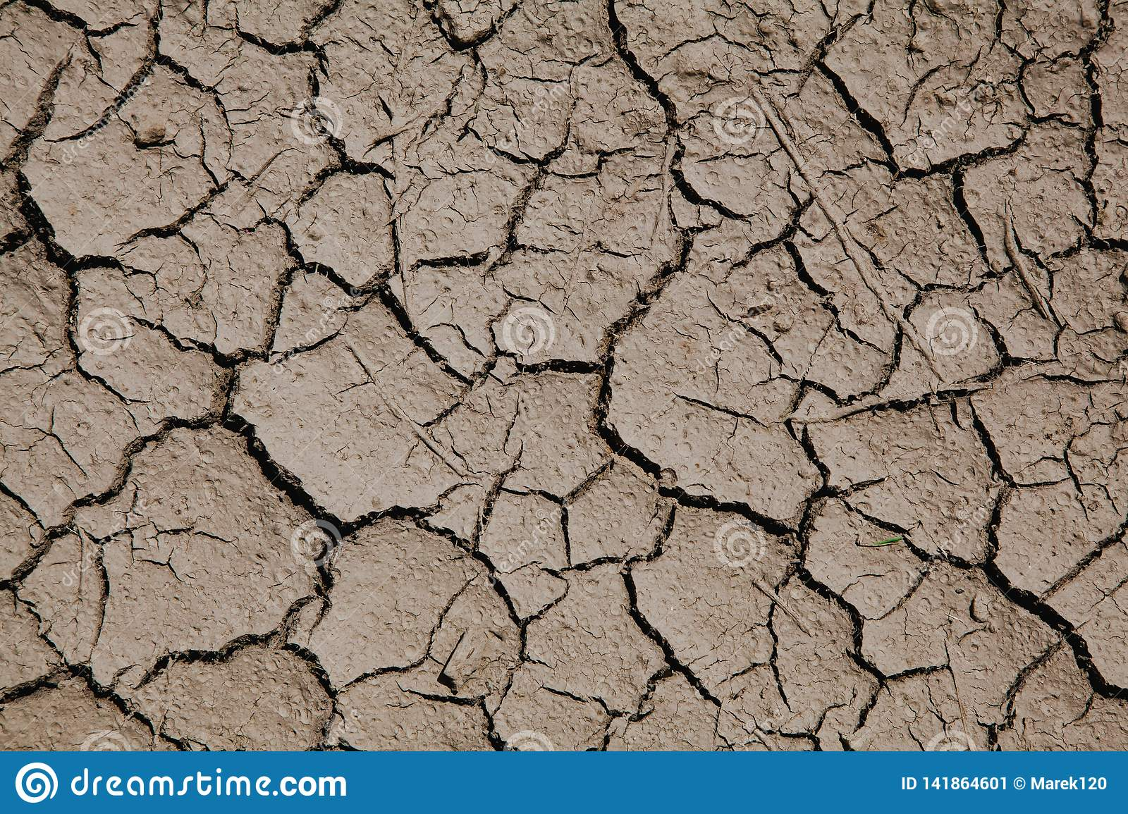 Risk of global warming - dry soil with cracks.