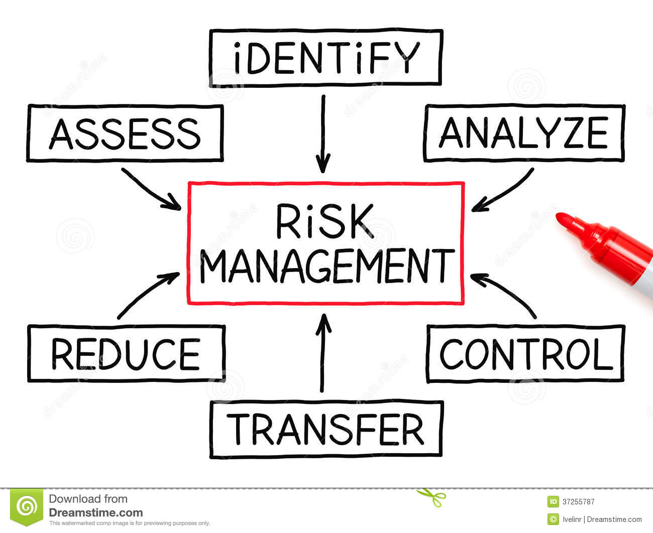Risk Management and Insurance right writer free download
