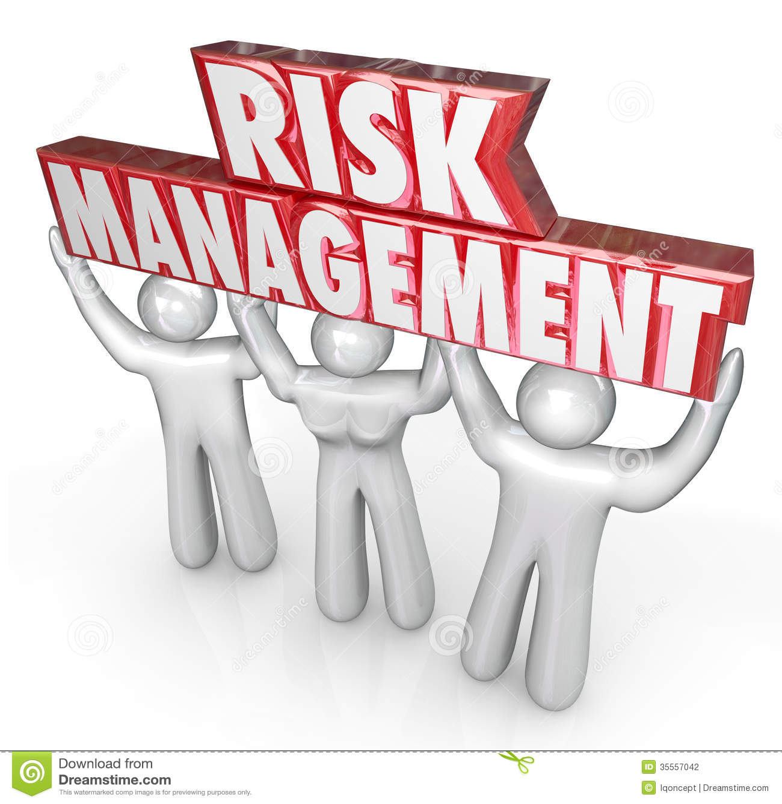 Word Risk Management Plan