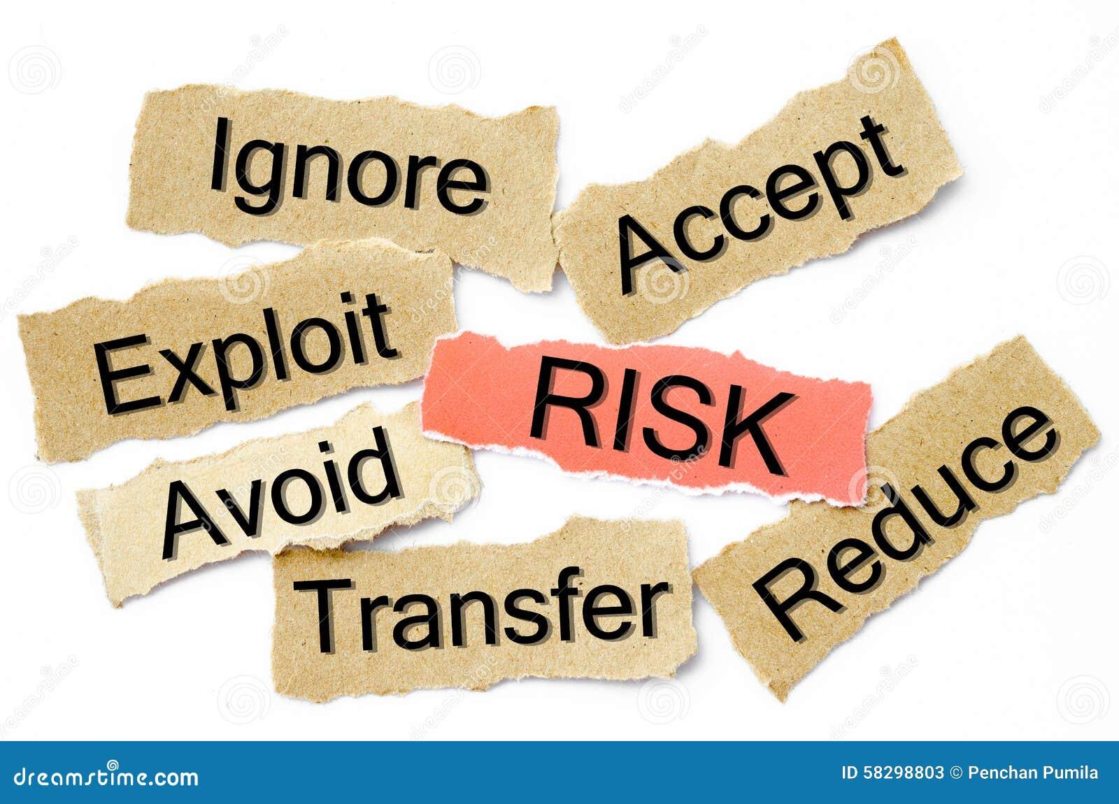 it risk management process pdf