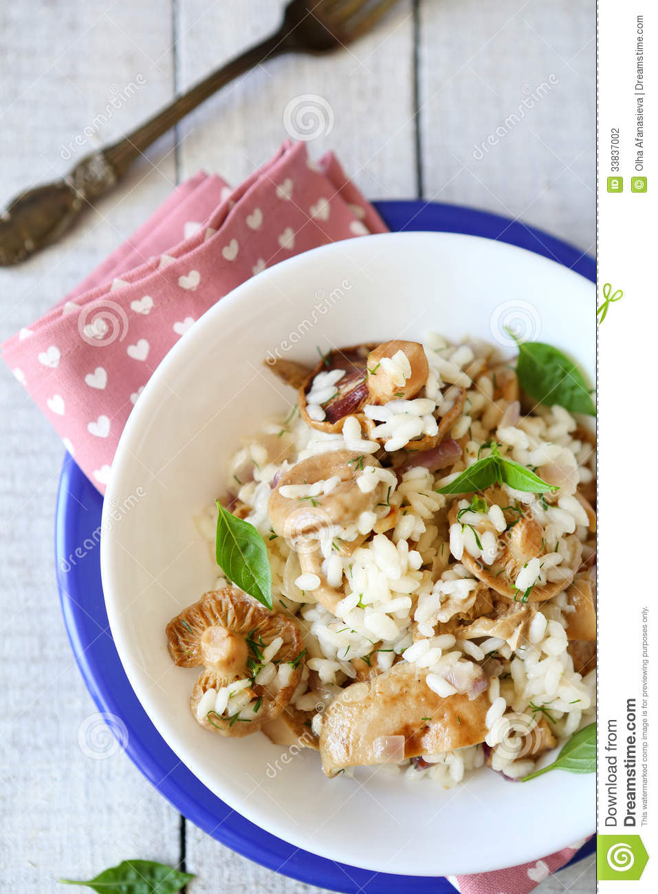 Risotto with boletus top view in white bowl stock photography image