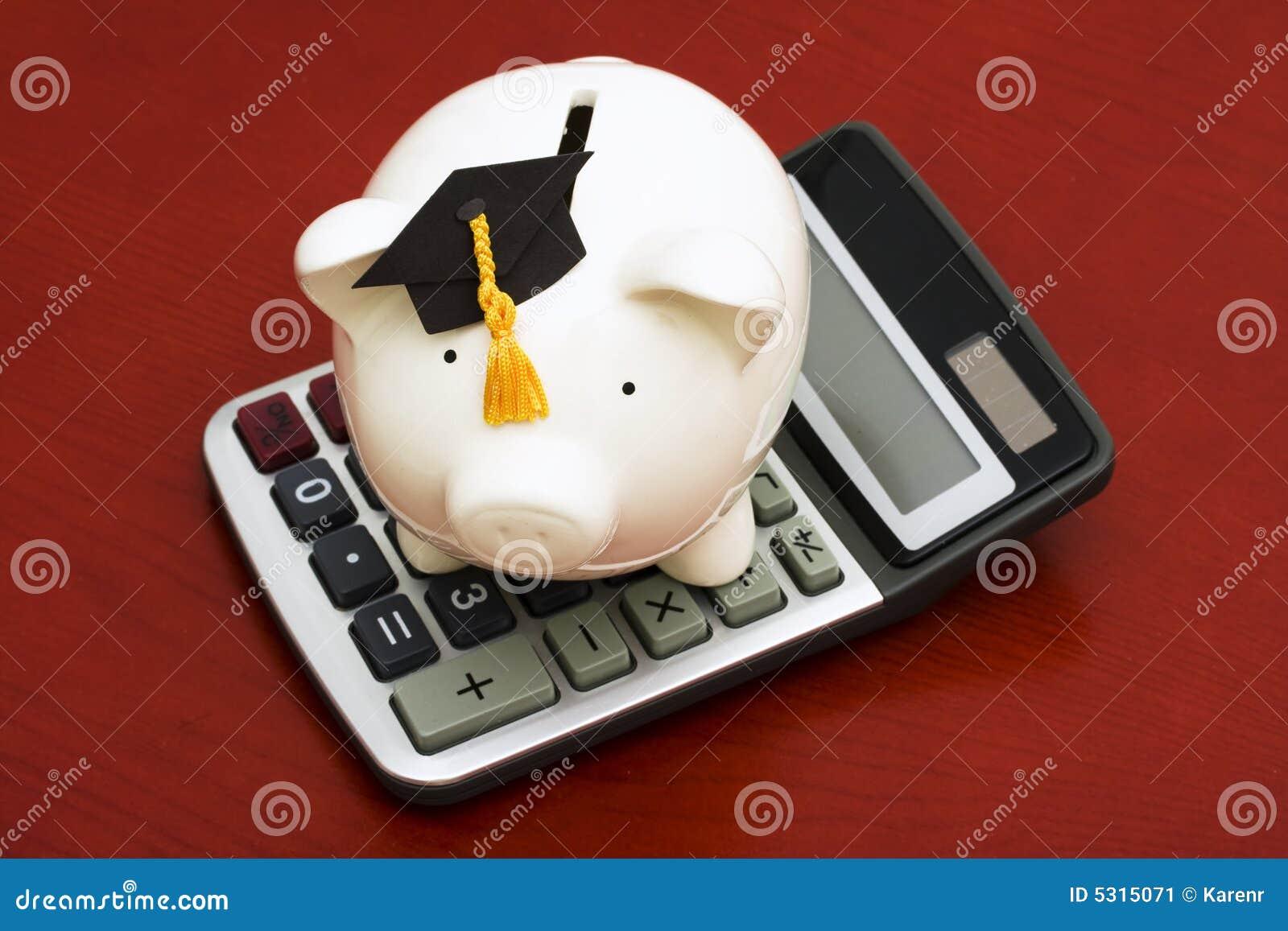 Download Risparmio Calcolatore Di Formazione Immagine Stock - Immagine di banca, cappello: 5315071