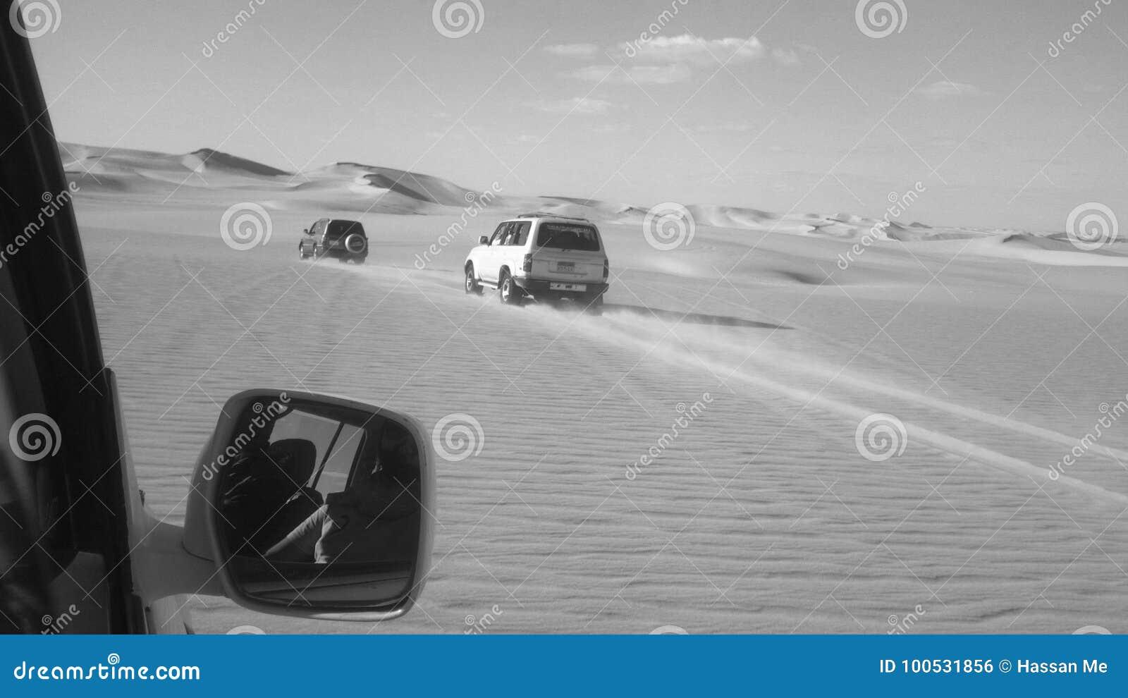 Risquez à travers les grands sables de désert en noir et blanc