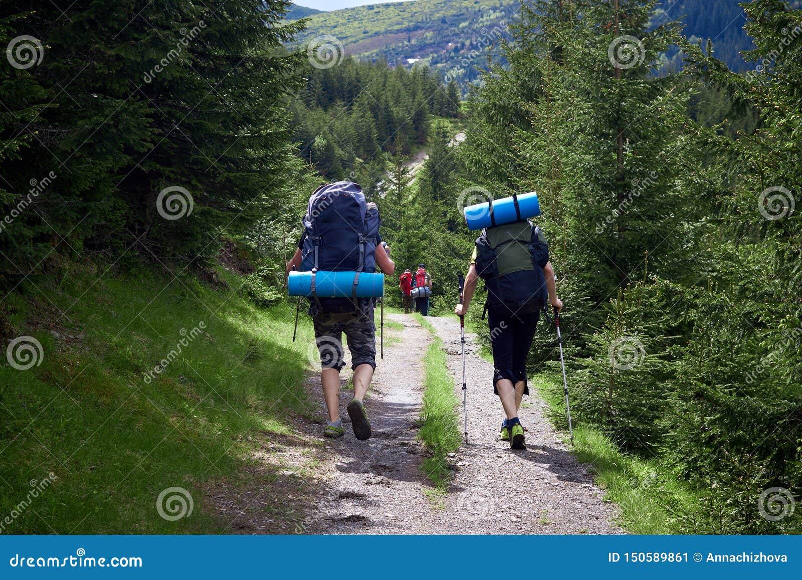 Risquez, voyagez, tourisme, hausse et concept de personnes - groupe d amis marchant avec des sacs ? dos de dos