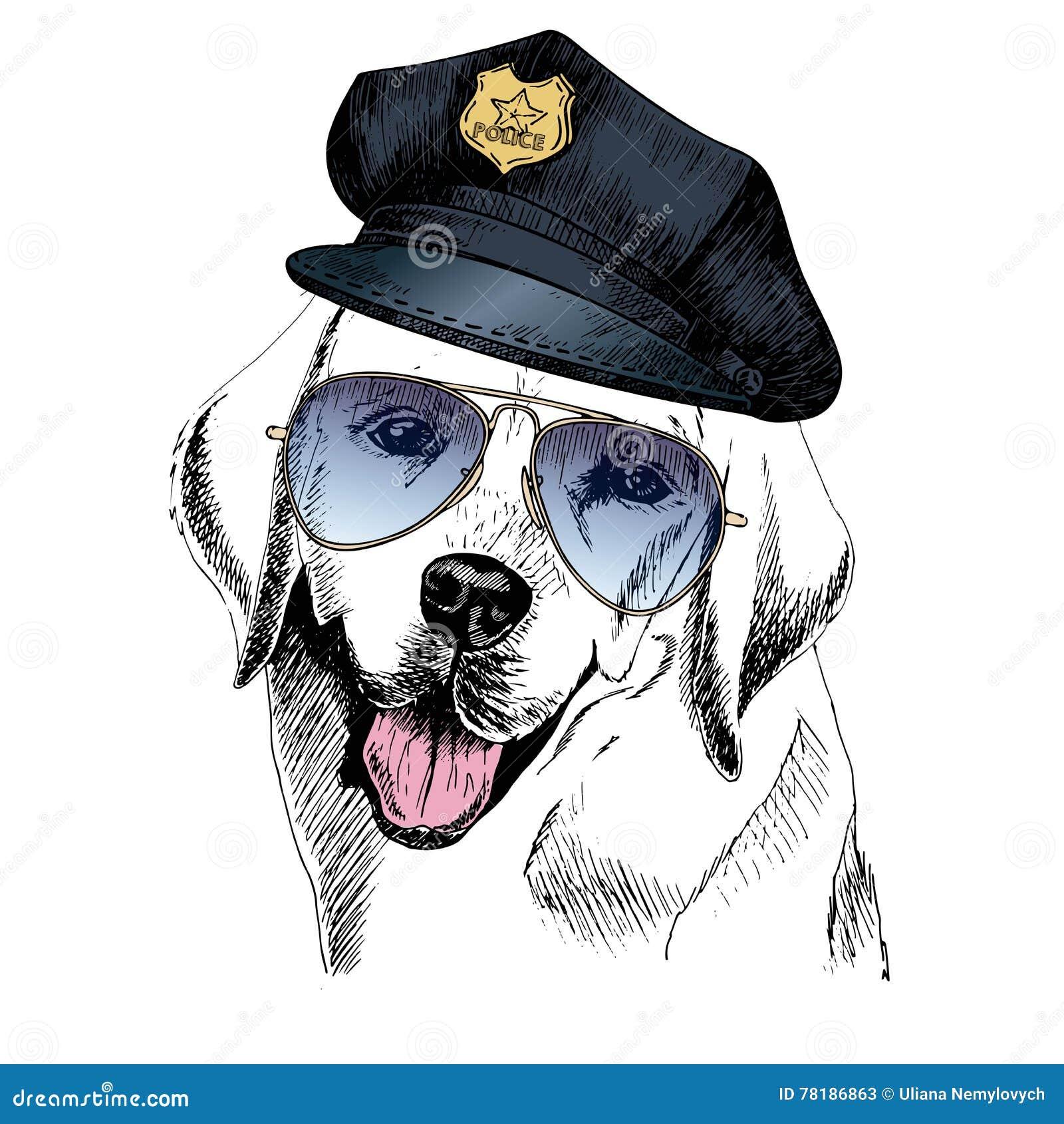 Ritratto Alto Vicino Di Vettore Del Cane Poliziotto Labrador