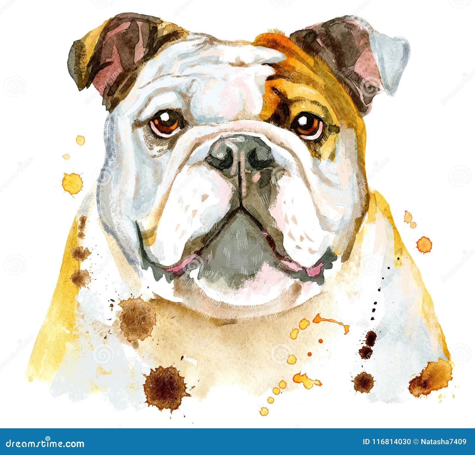Ritratto dell acquerello del bulldog