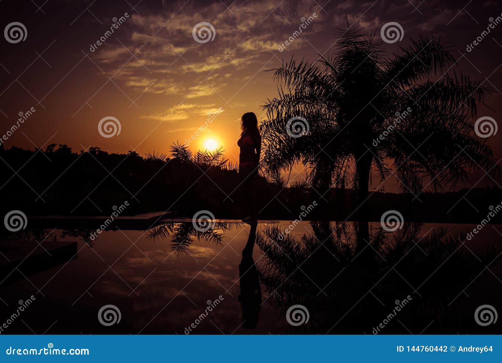 Ritratto di una condizione della giovane donna contro un tramonto splendido