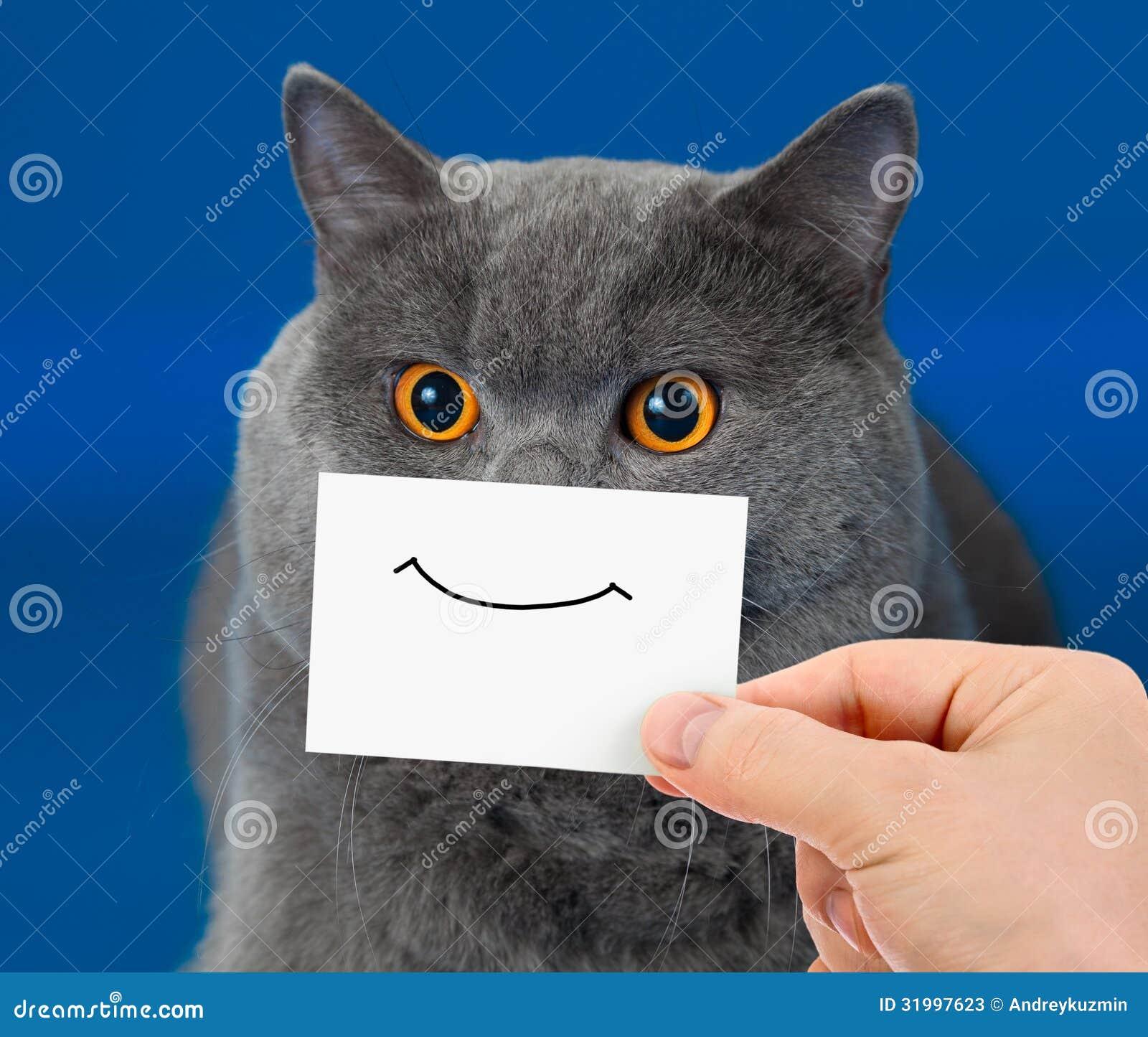 Ritratto divertente del gatto con il sorriso